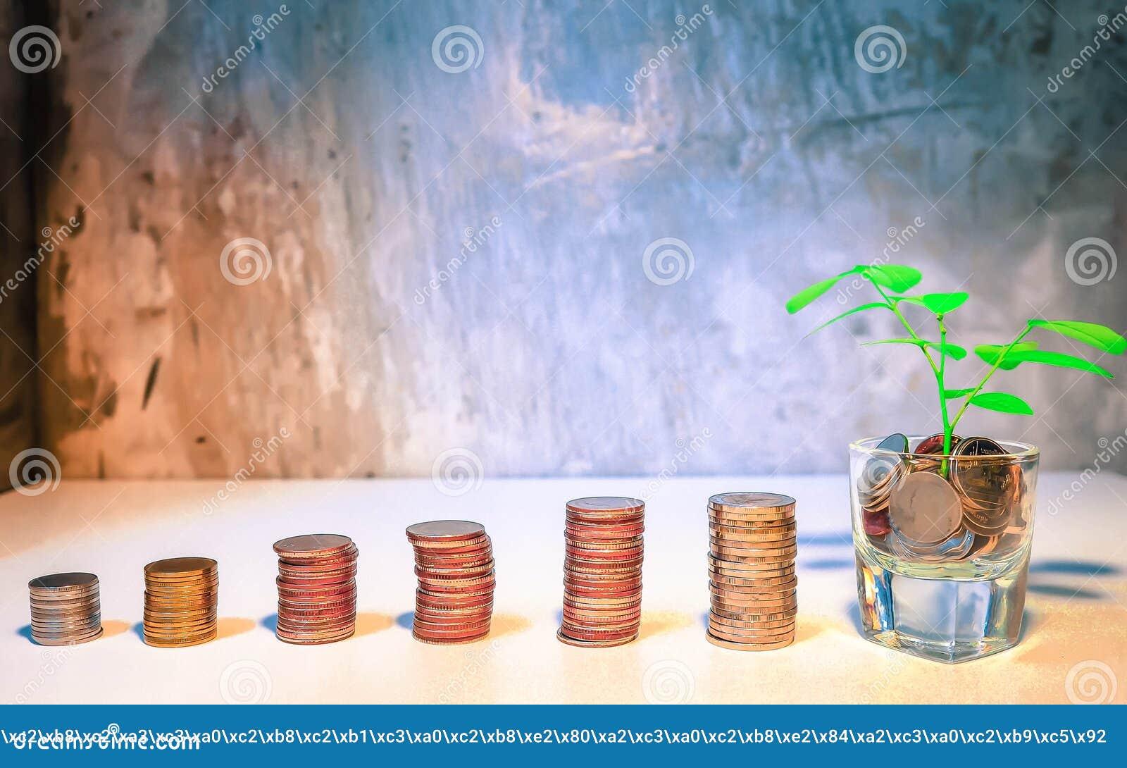 Las ideas del ahorro del dinero recogen monedas para crecer Moneda en el bottl de cristal