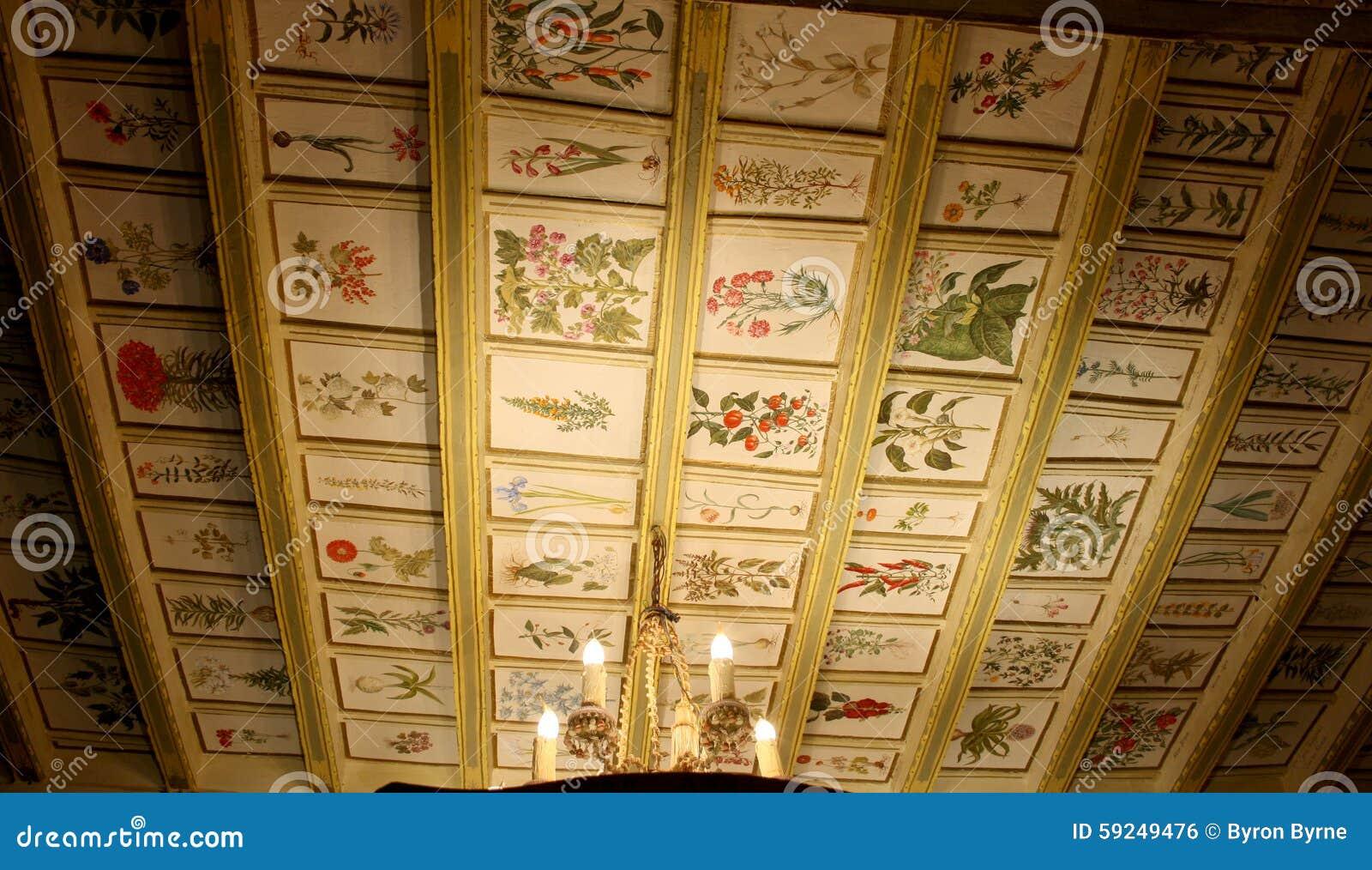 Las ilustraciones medievales en un techo se encendieron por luz de una vela
