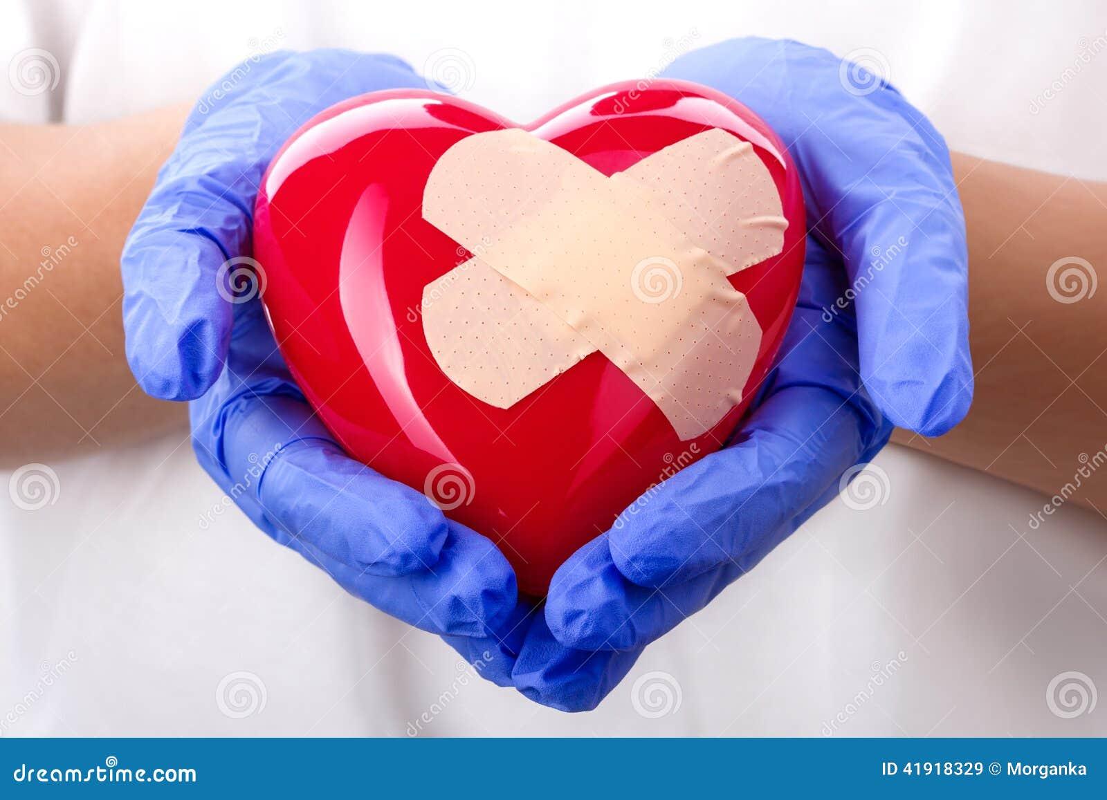 Las manos del doctor que llevan a cabo el corazón enyesado