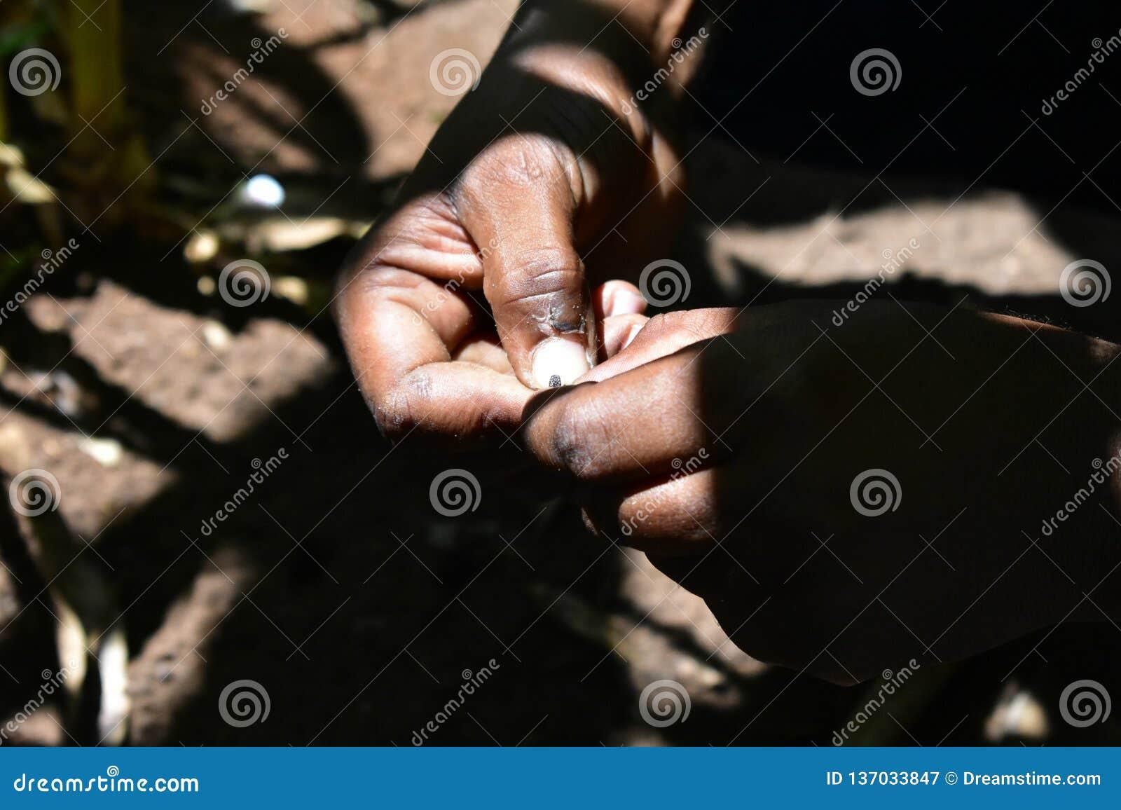 Las manos se cierran para arriba en luz suave