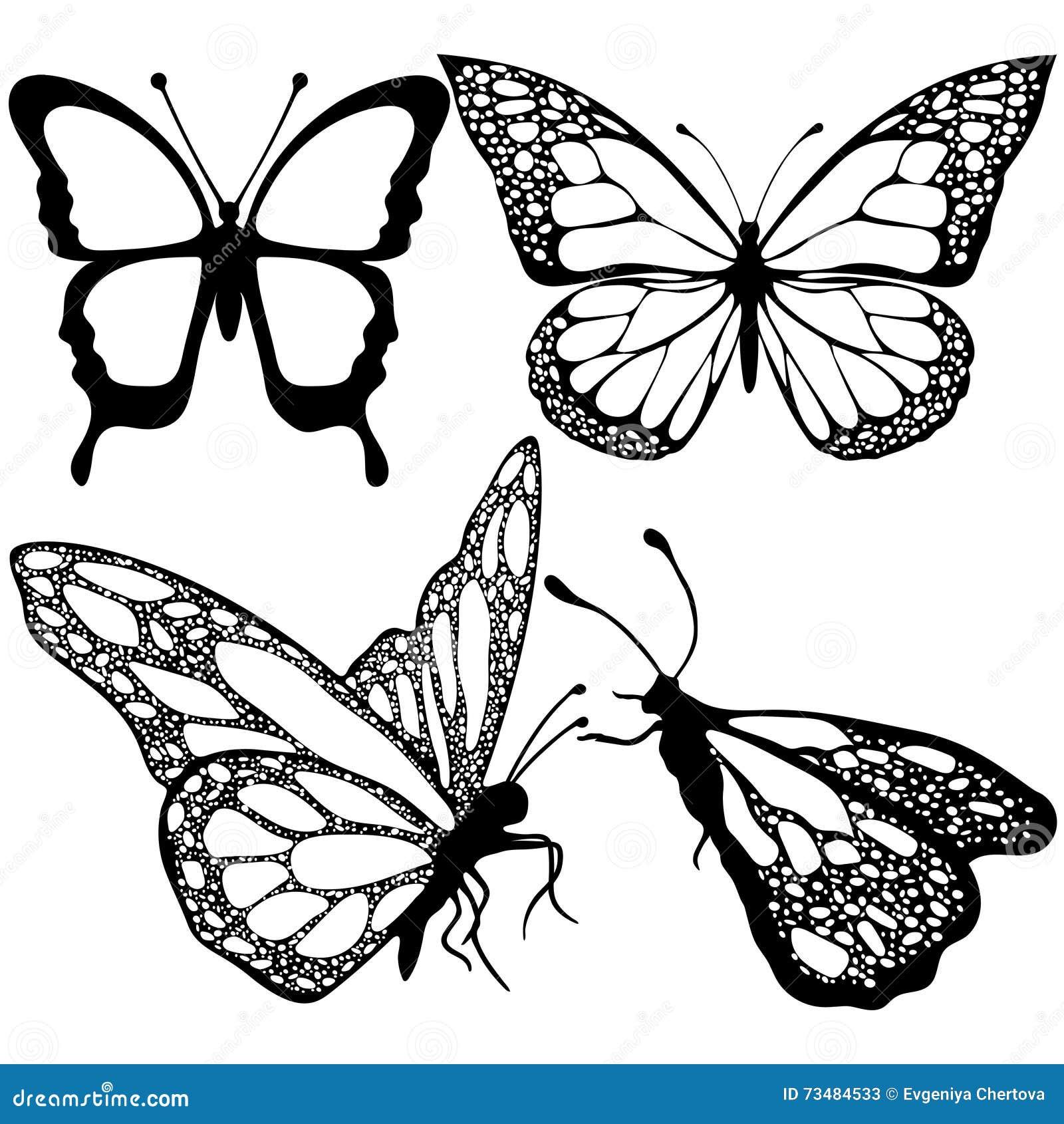 Las Mariposas Fijaron, Monocromo, Libro De Colorear, Ejemplo Blanco ...