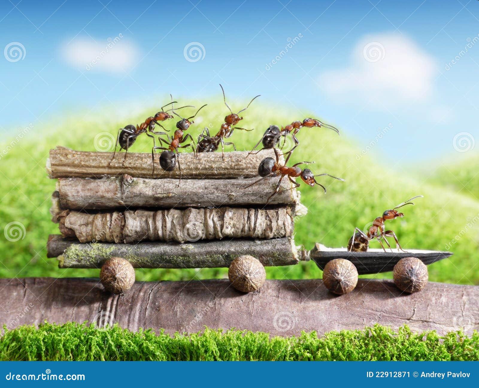 Las personas de hormigas llevan registros con el coche del rastro, trabajo en equipo