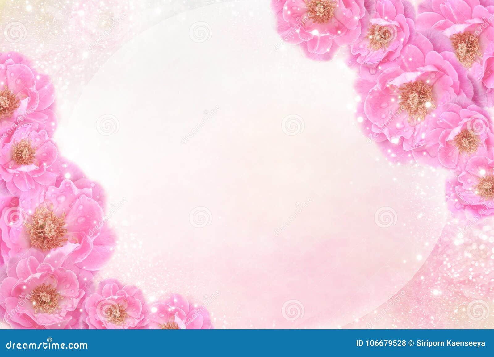 Las Rosas Rosadas Románticas Florecen La Frontera En El