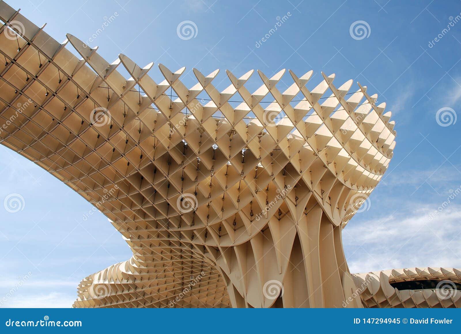 Las szczecinki de Sevilla w Hiszpania