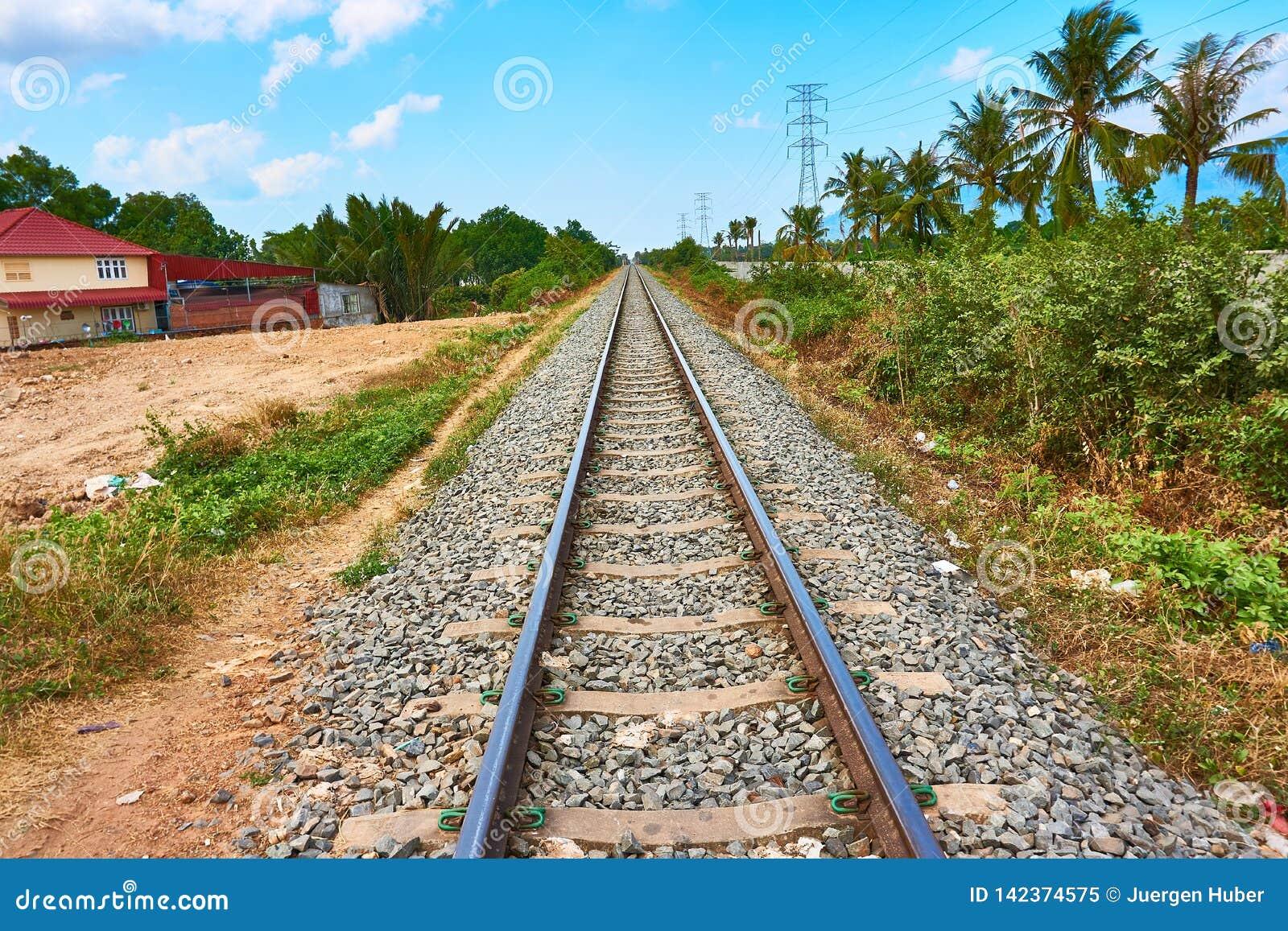 Las vías del tren de ferrocarril van al horizonte con las palmeras