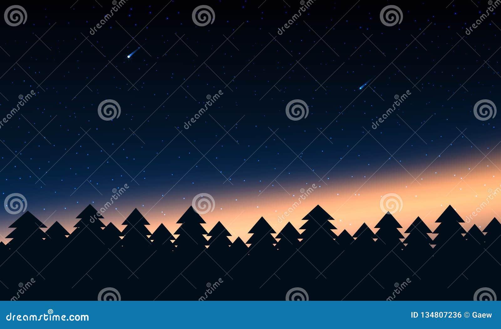 Lasowe sylwetki z zorzy gwiazdą i światłami