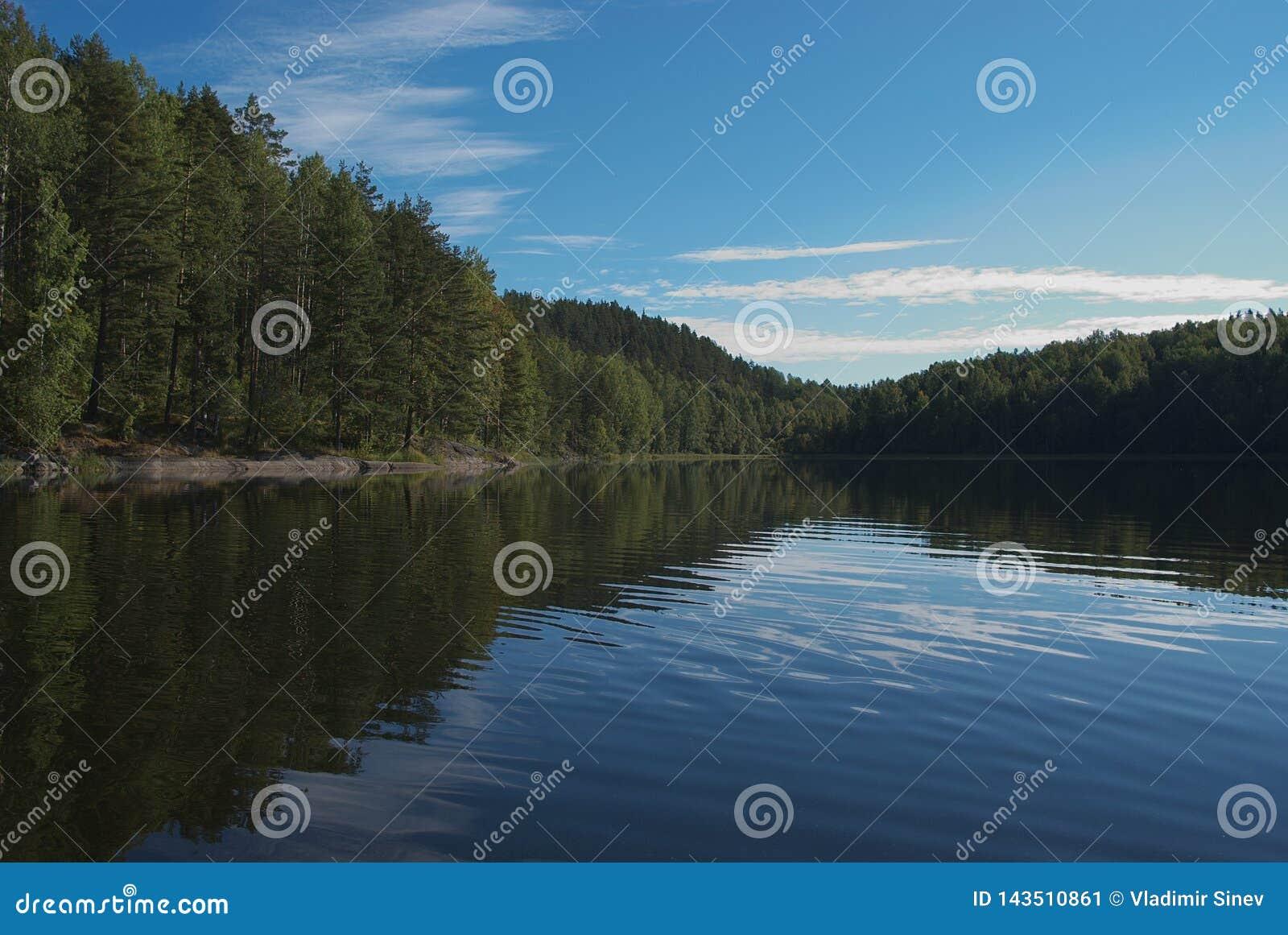 Lasowy jezioro Karelia