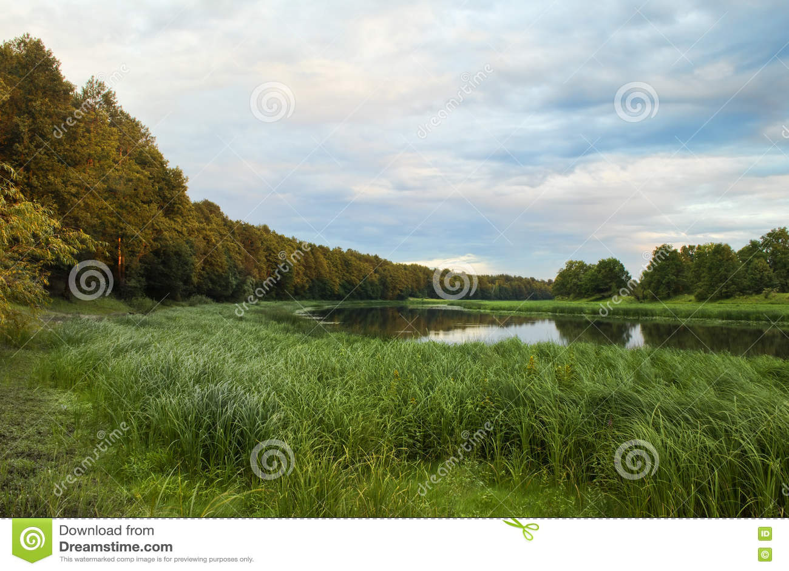 Lasowy jezioro przy wieczór