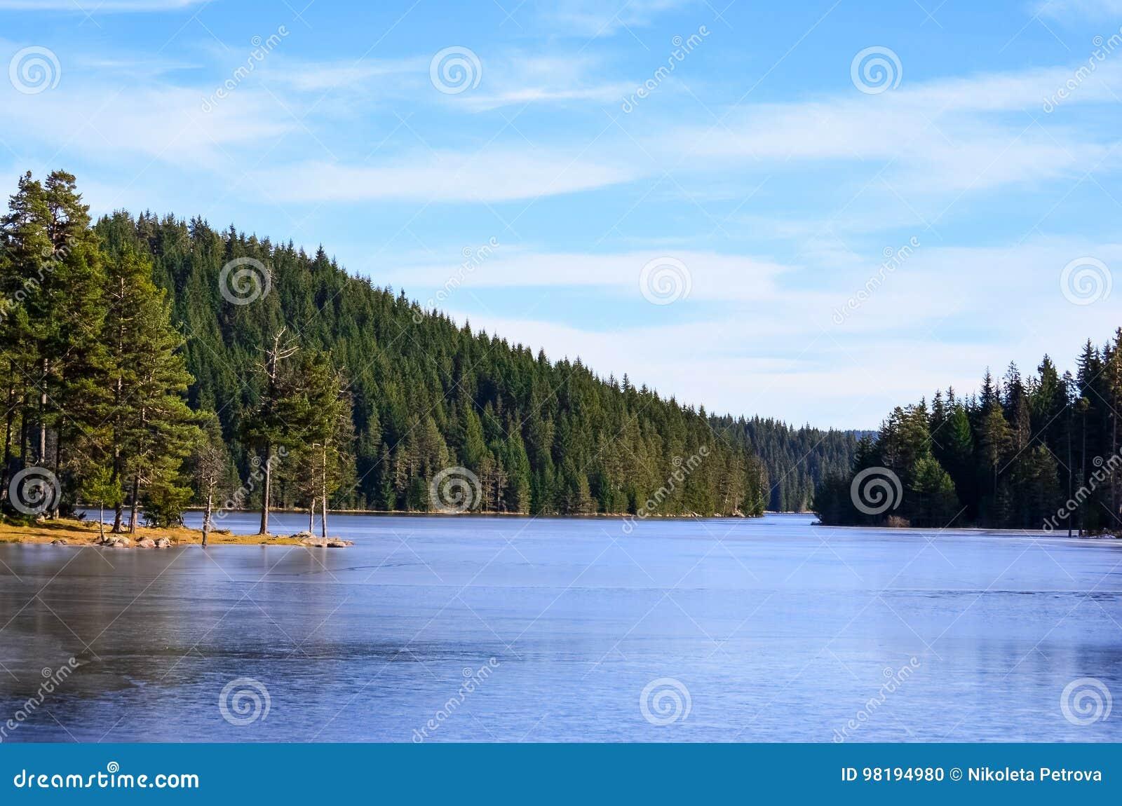 Lasowy otaczanie sztuczny jezioro