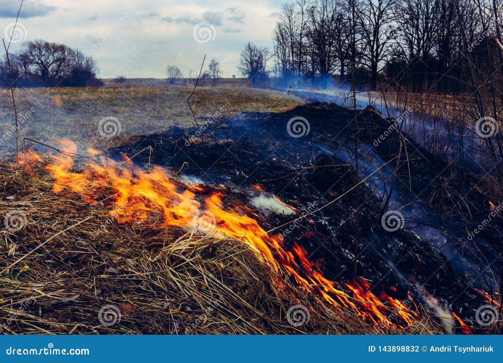 Lassen Sie uns sagen trockenes, Gras, es zu brennen aufzuhören ist gefährlich