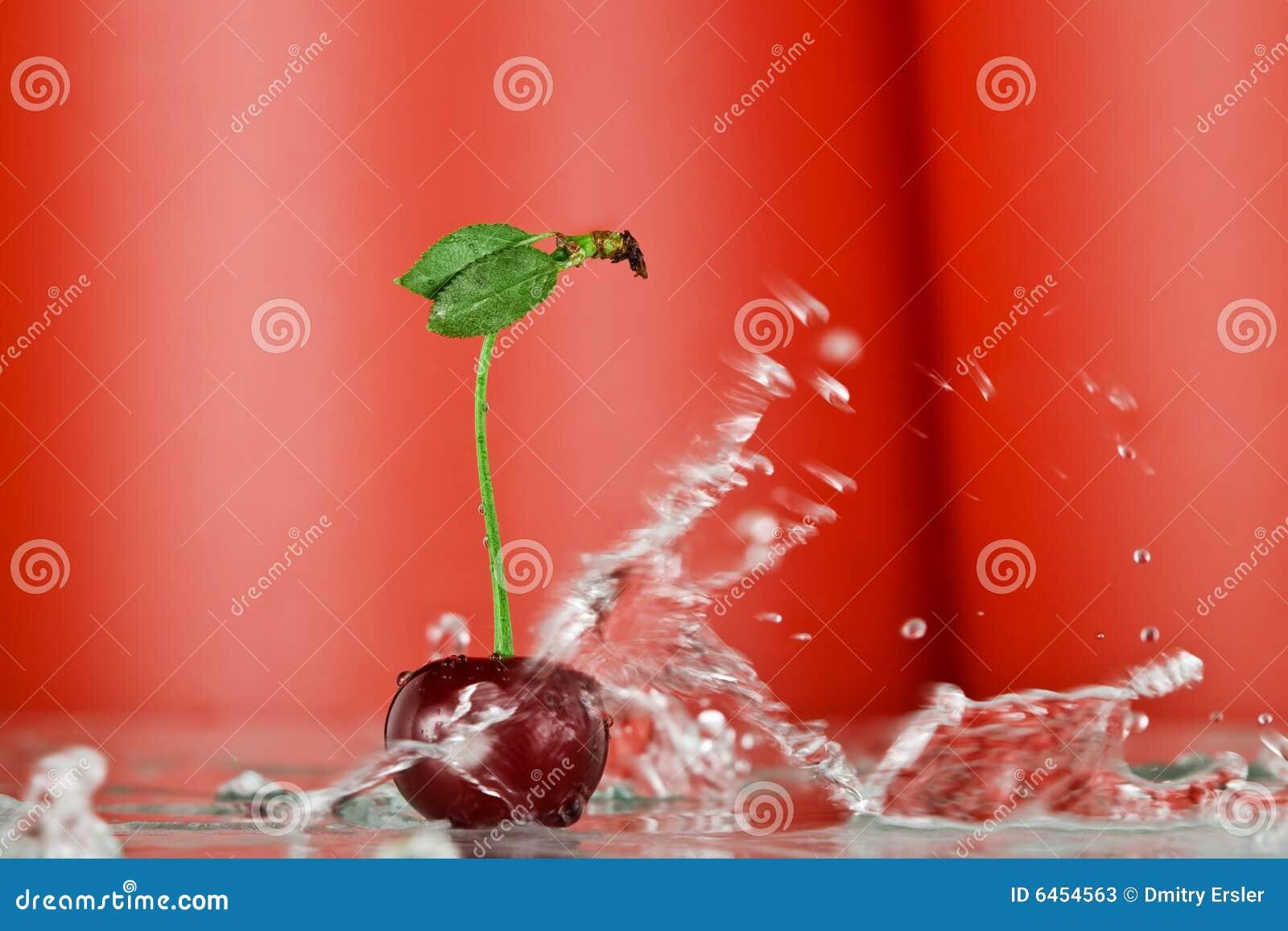 last splash   wiśniowy