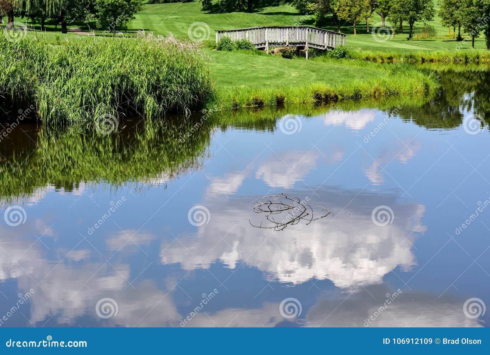 Lat drzewa i niebo odbijaliśmy w jezioro wodzie