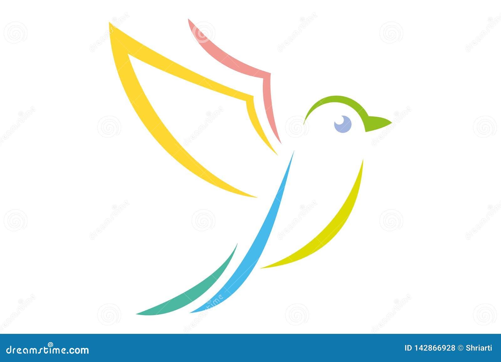 Latać odosobnioną tęczę barwił ptaka na białym tle