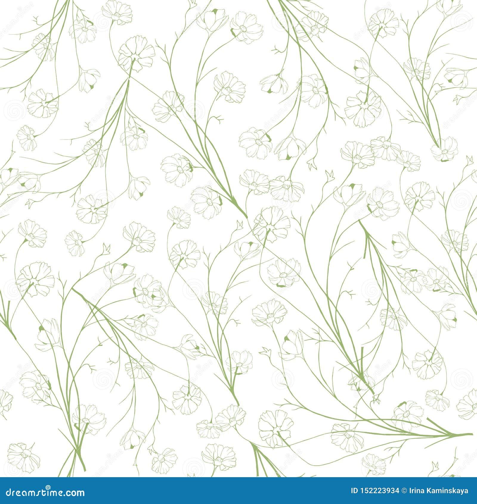 Lata lekki tło konturowi zieleni kolory Wiosen botaniczne tekstury na białym tle dla kart, tkaniny, zaproszenia,