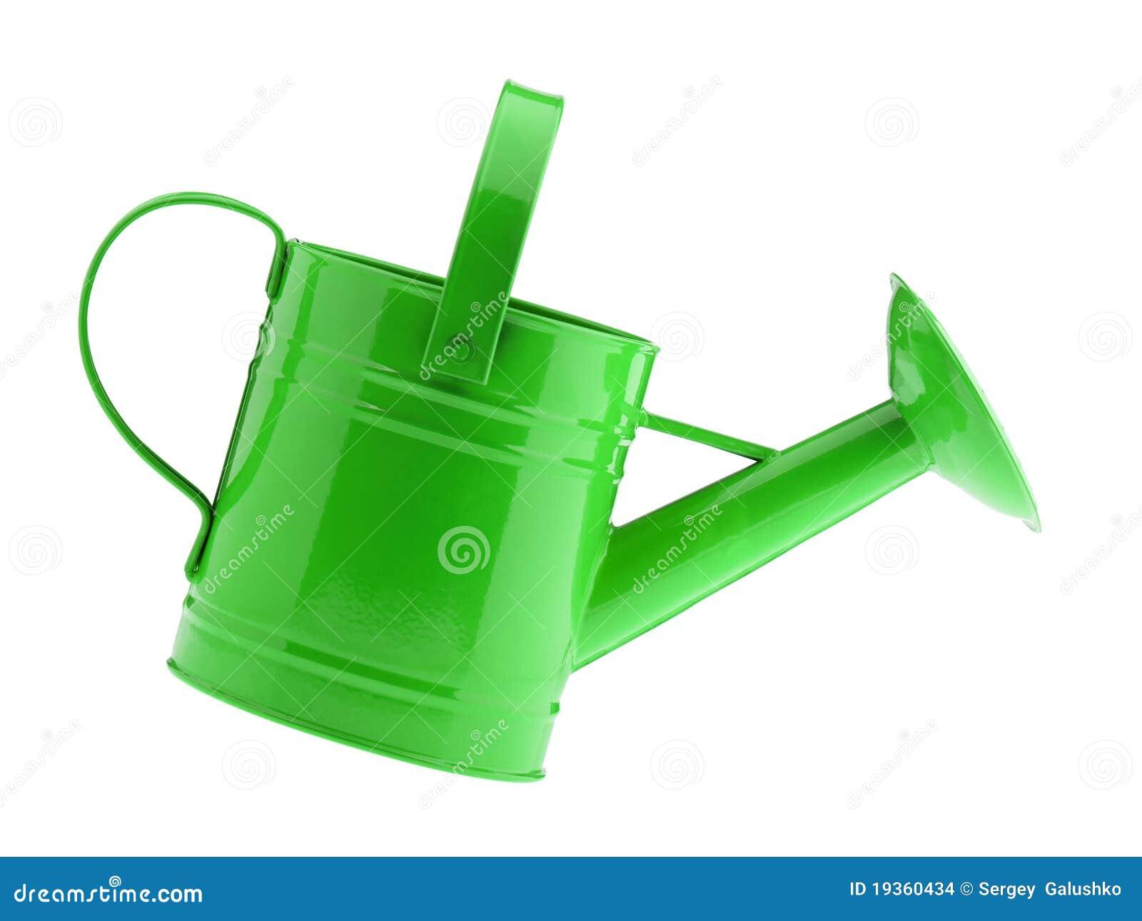 Lata molhando verde