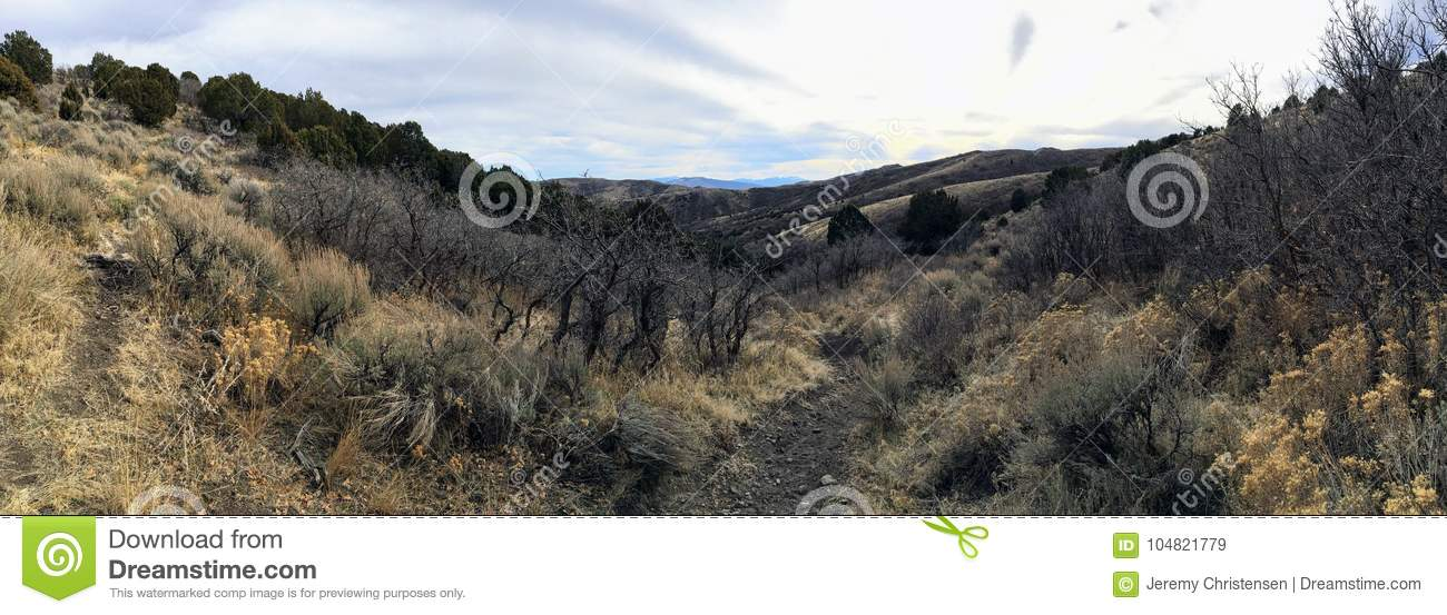 Late Fall panorama forest views hiking, biking, horseback trails through trees on the Yellow Fork and Rose Canyon Trails in Oquirr