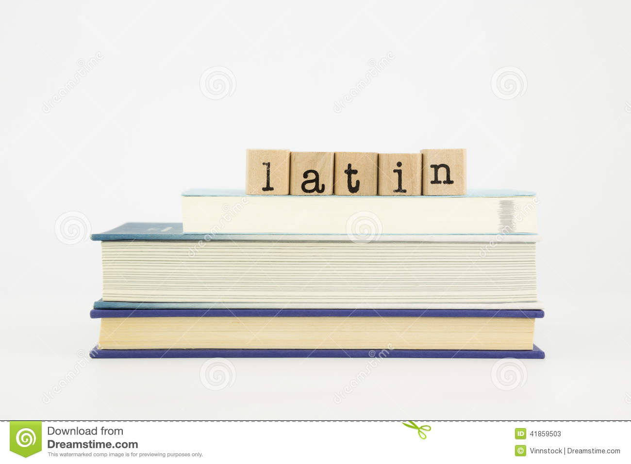 Latin word on wood stamps stack on books, language and study concept.