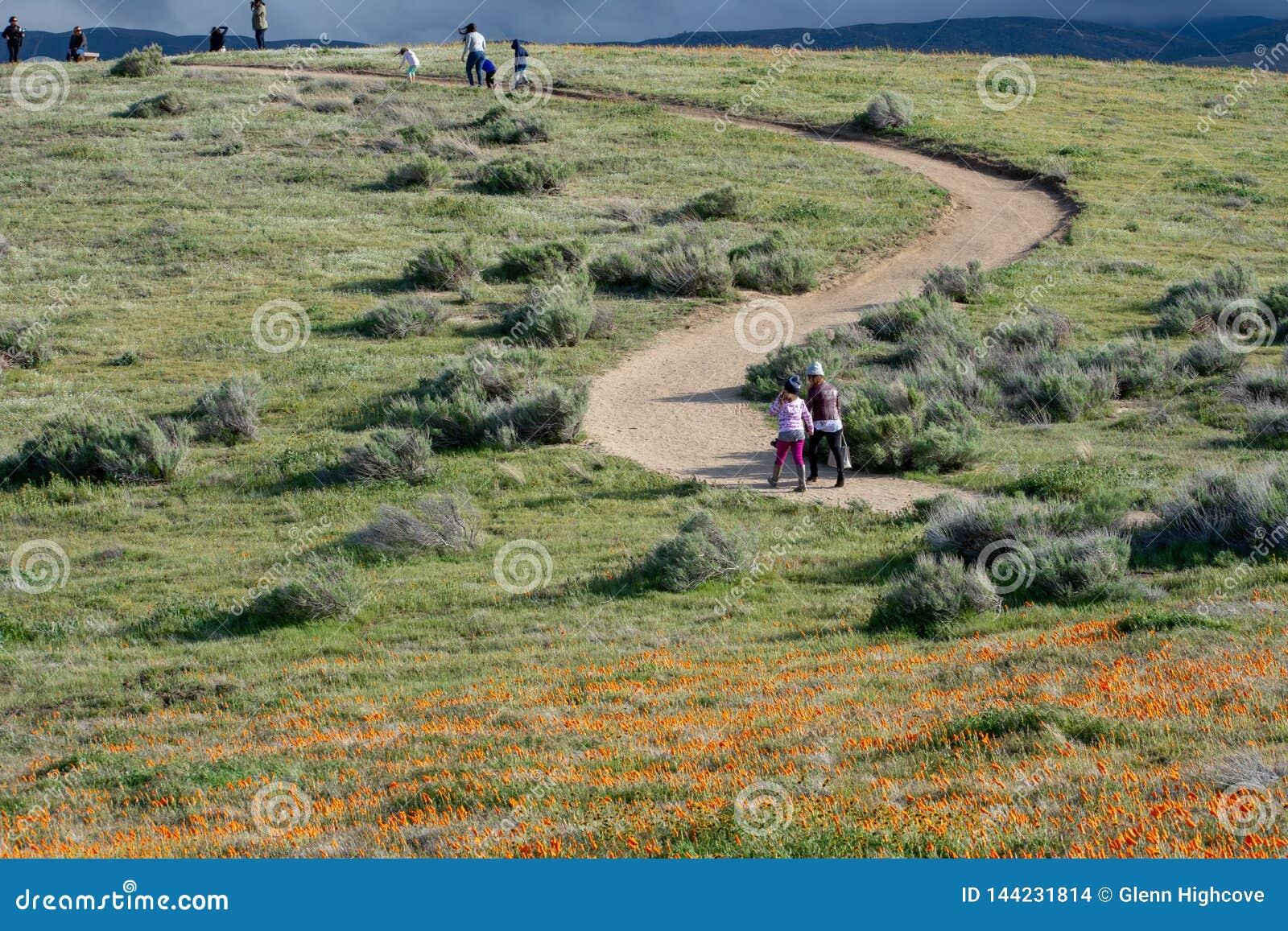 Latina-Mutter und Tochter vor Wüste Kalifornien-Mohnblumenfeld auf Weg mit den orange und gelben Blumen