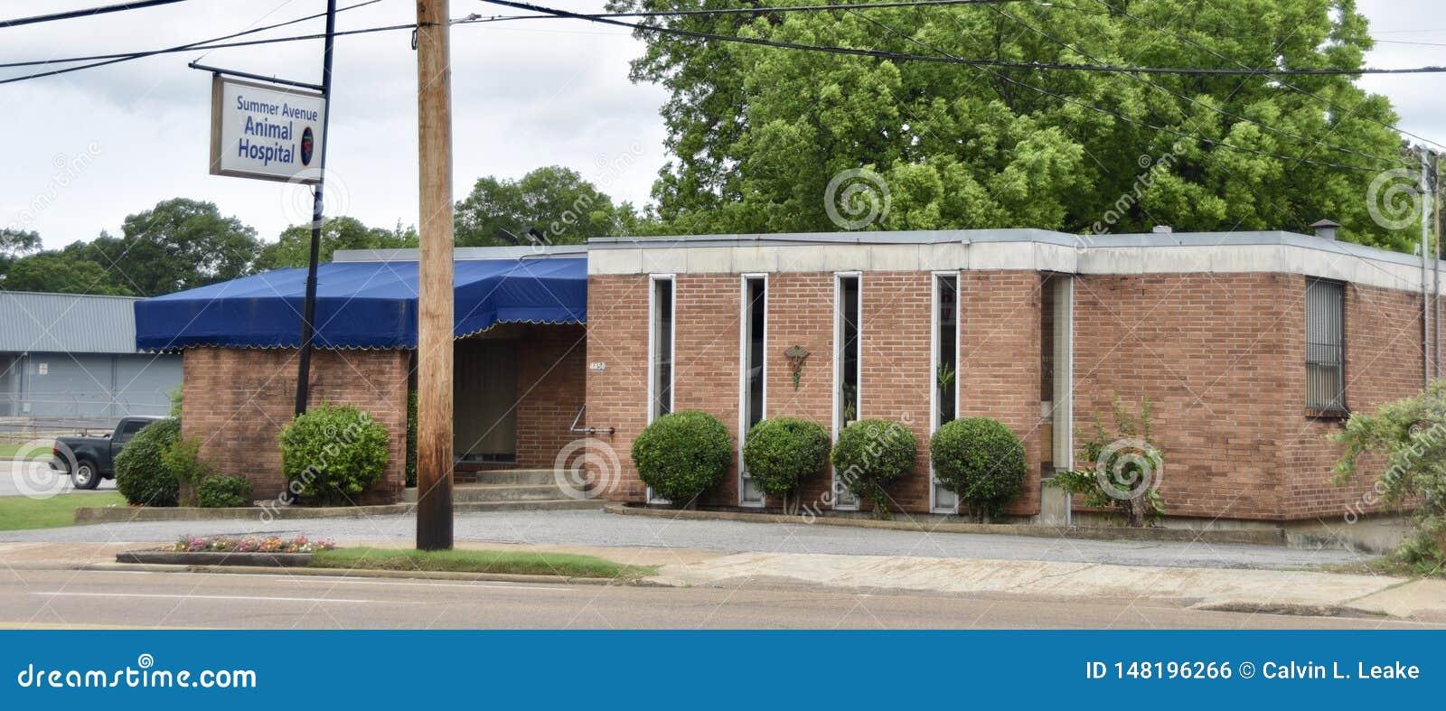 Lato alei Zwierzęcy szpital, Memphis, TN