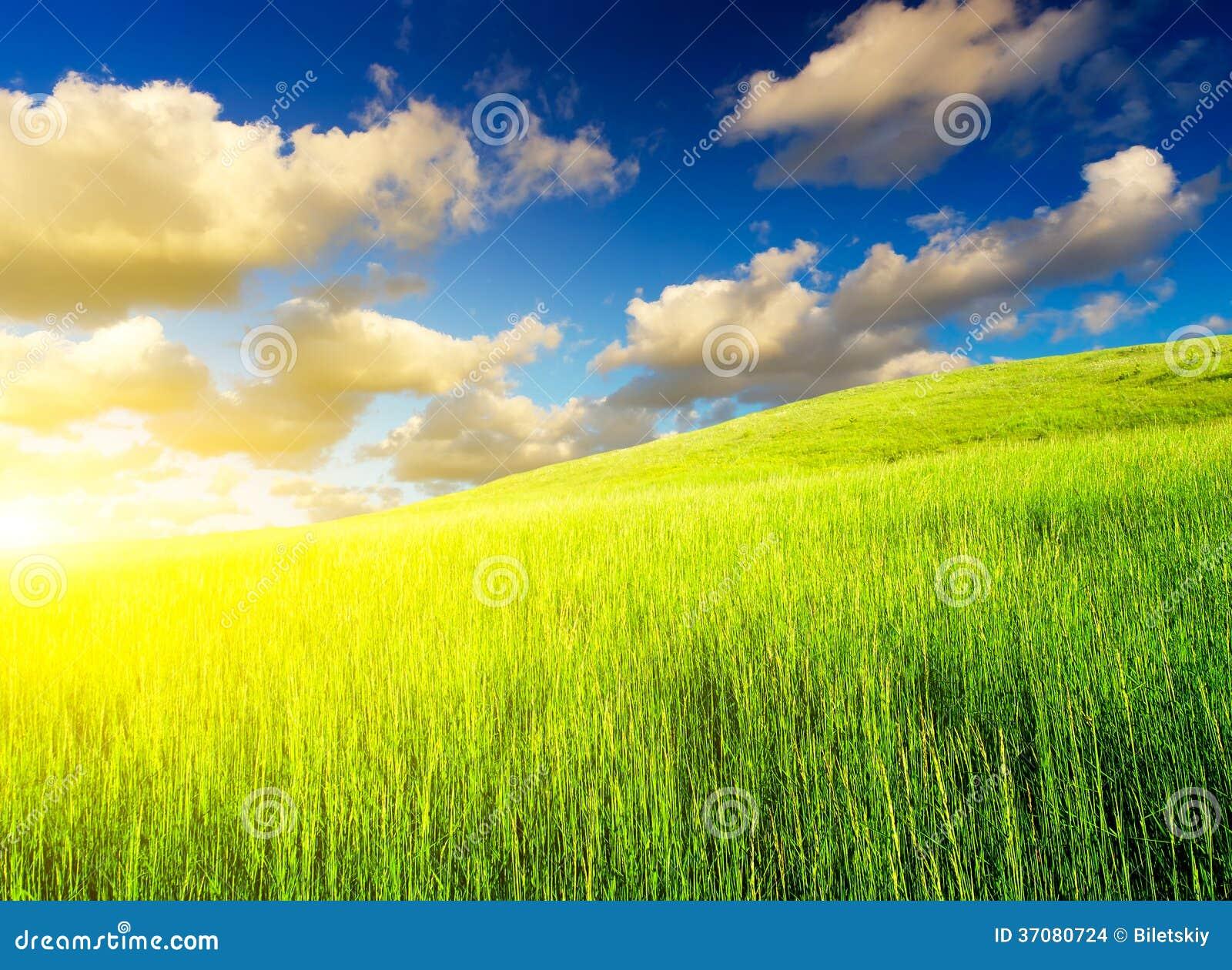 Download Lato krajobraz zdjęcie stock. Obraz złożonej z łuna, świeży - 37080724
