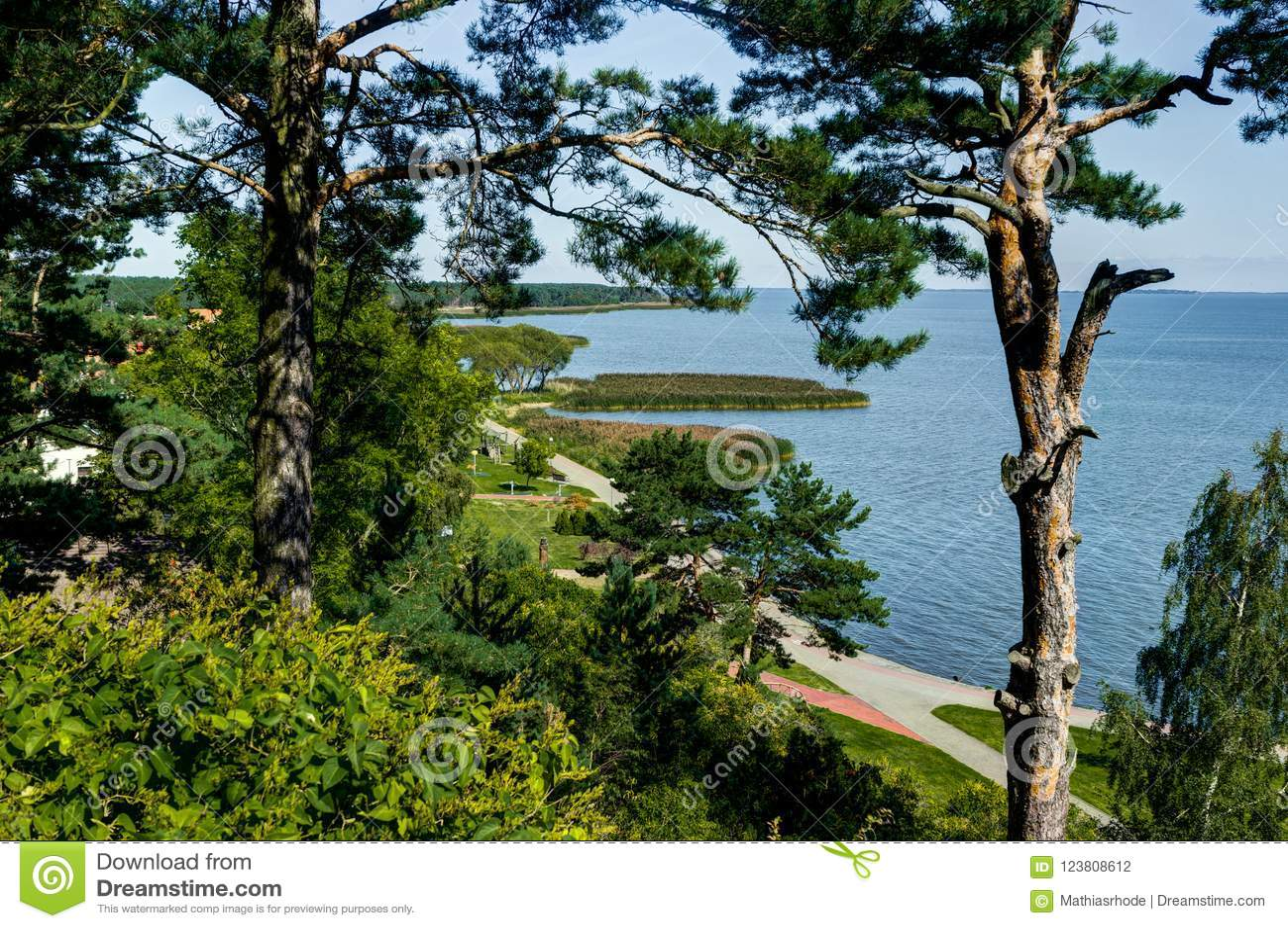 Lato krajobraz z diunami, krzakami i niebem białymi piaska, Curonian mierzeja, morze bałtyckie Unesco Światowego Dziedzictwa Miej