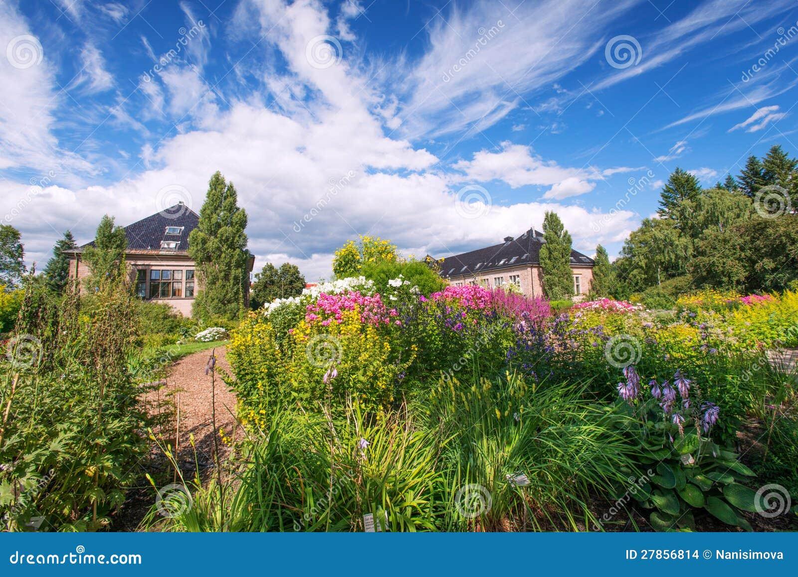 Lato ogród