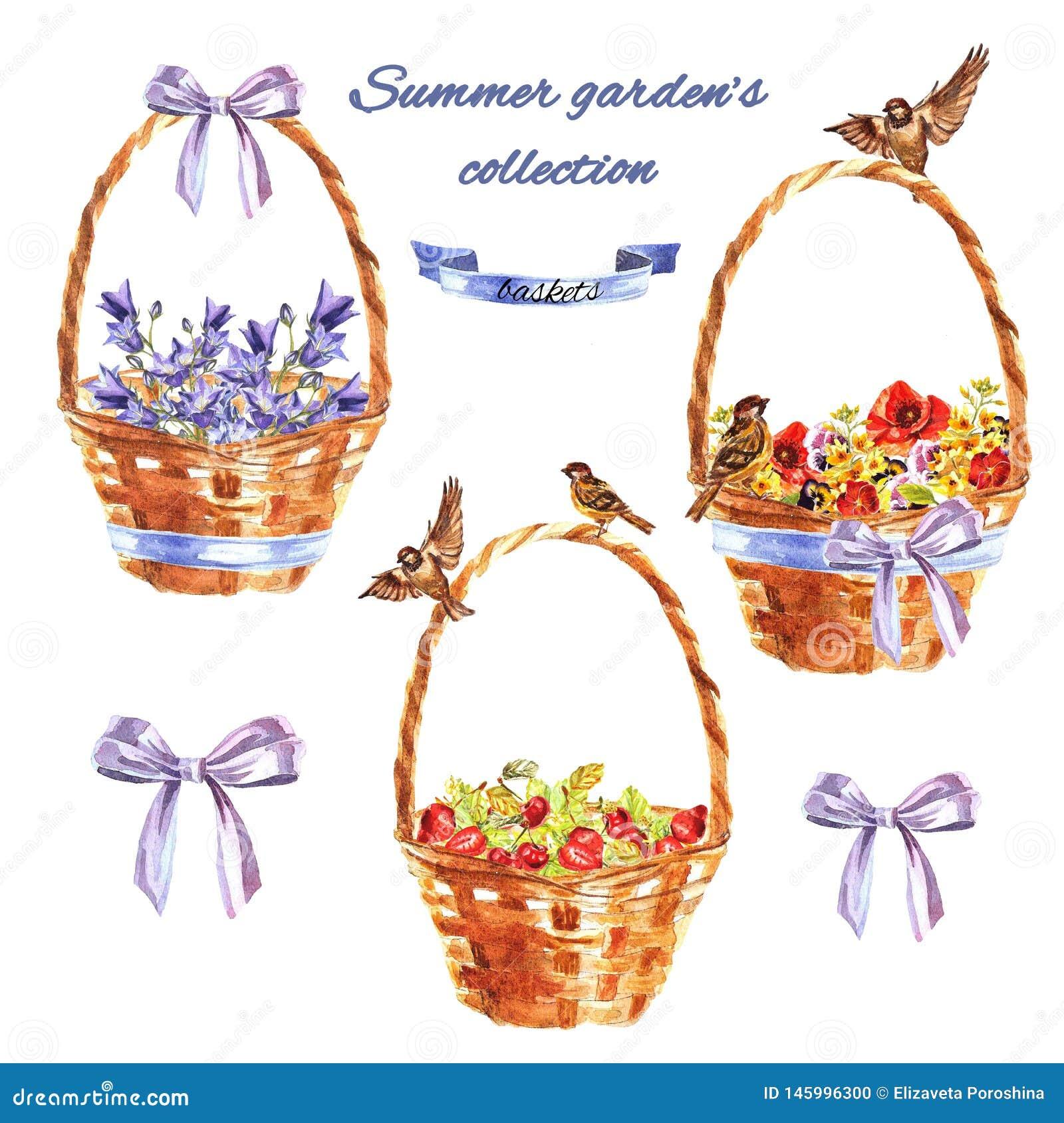 Lato ogród ustawiający z dekoracyjnymi łozinowymi koszami z kwiatami, wróblami i jagodami,
