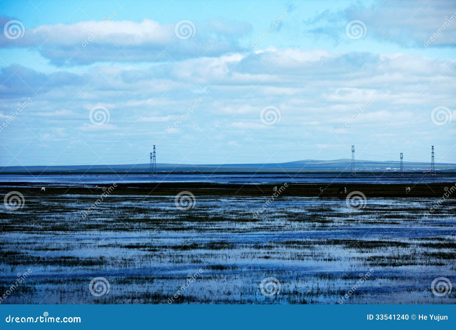 Lato powódź 2013 na hulunbeier dotacja obszarze trawiastym
