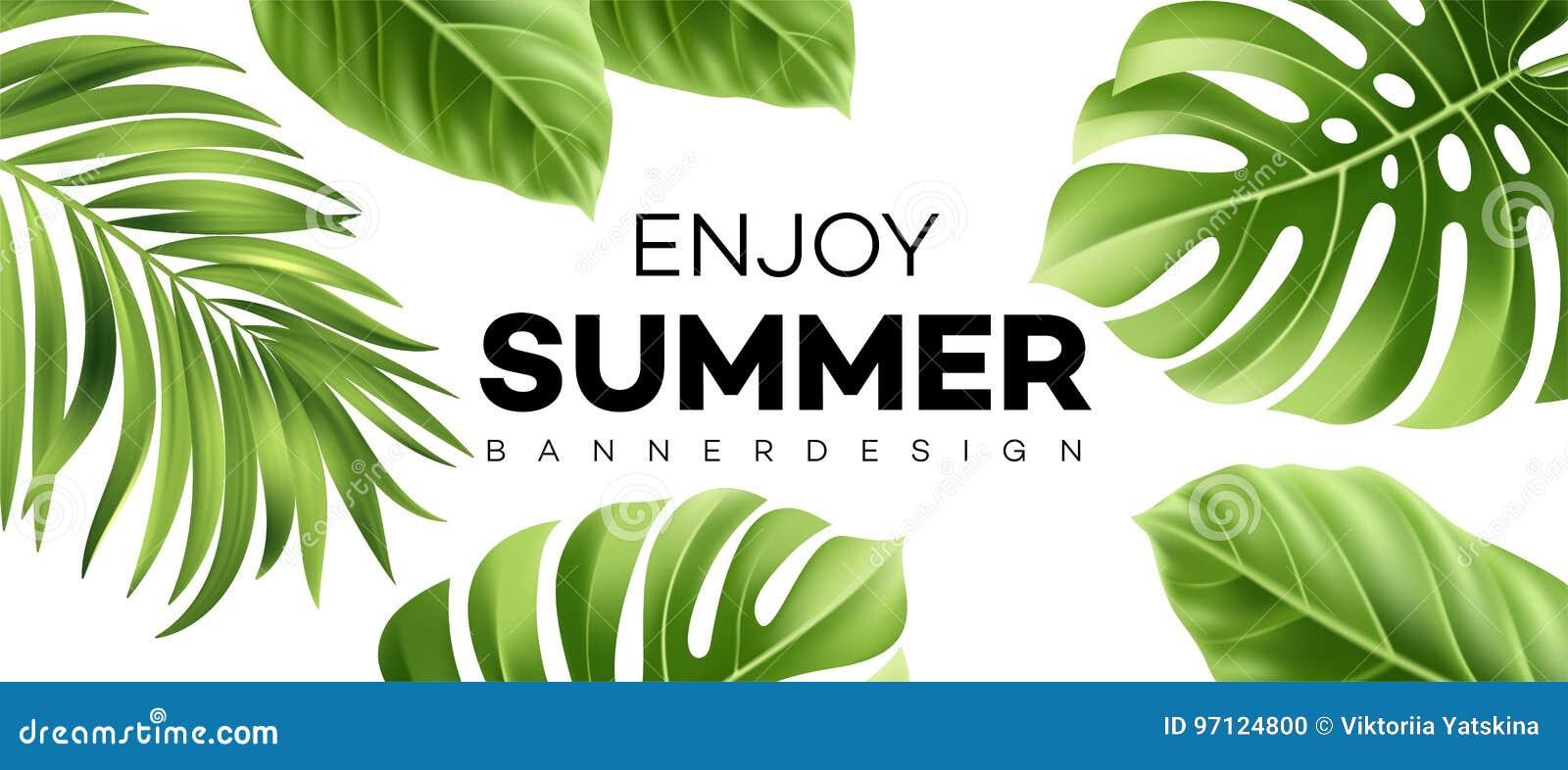Lato sprzedaży sztandar z tropikalną rośliną również zwrócić corel ilustracji wektora