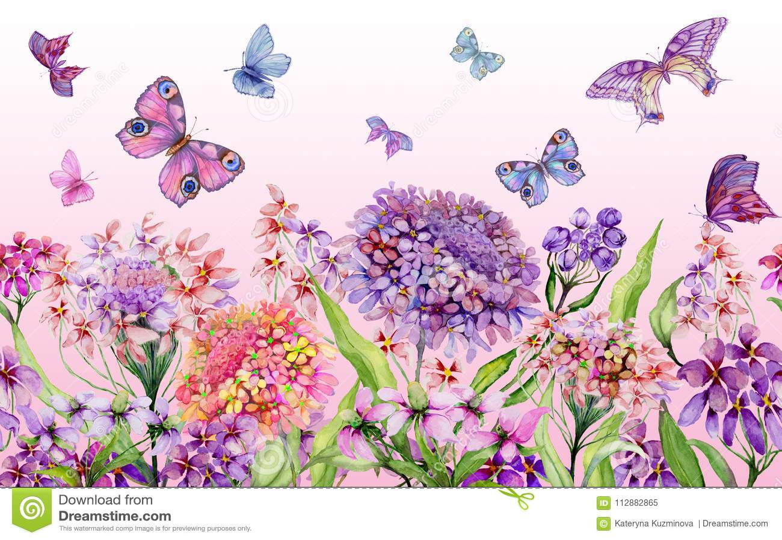 Lato szeroki sztandar Piękni żywi iberis kwiaty i kolorowi motyle na różowym tle Horyzontalny szablon
