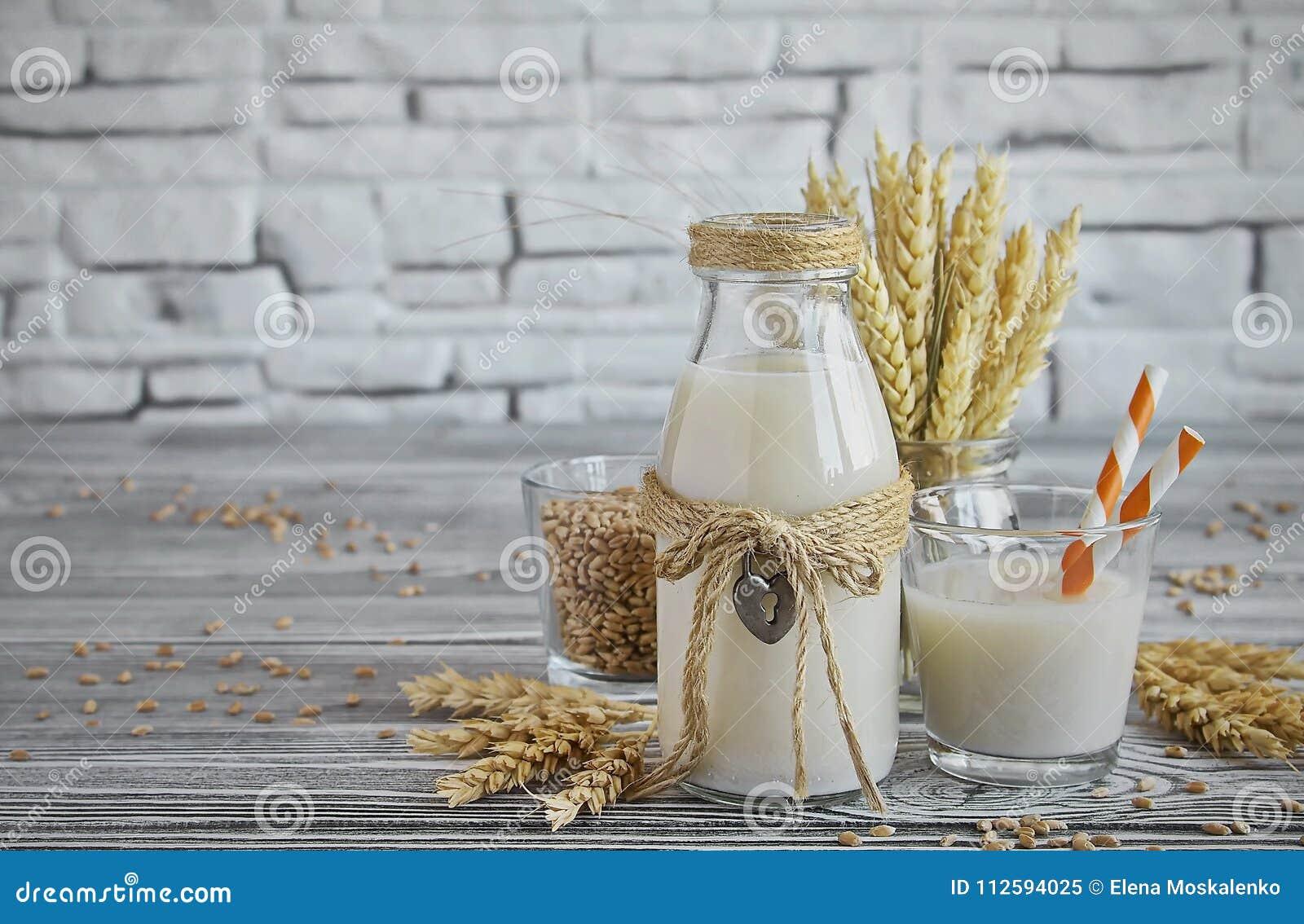 Latte casalingo del vegano di grano germogliato
