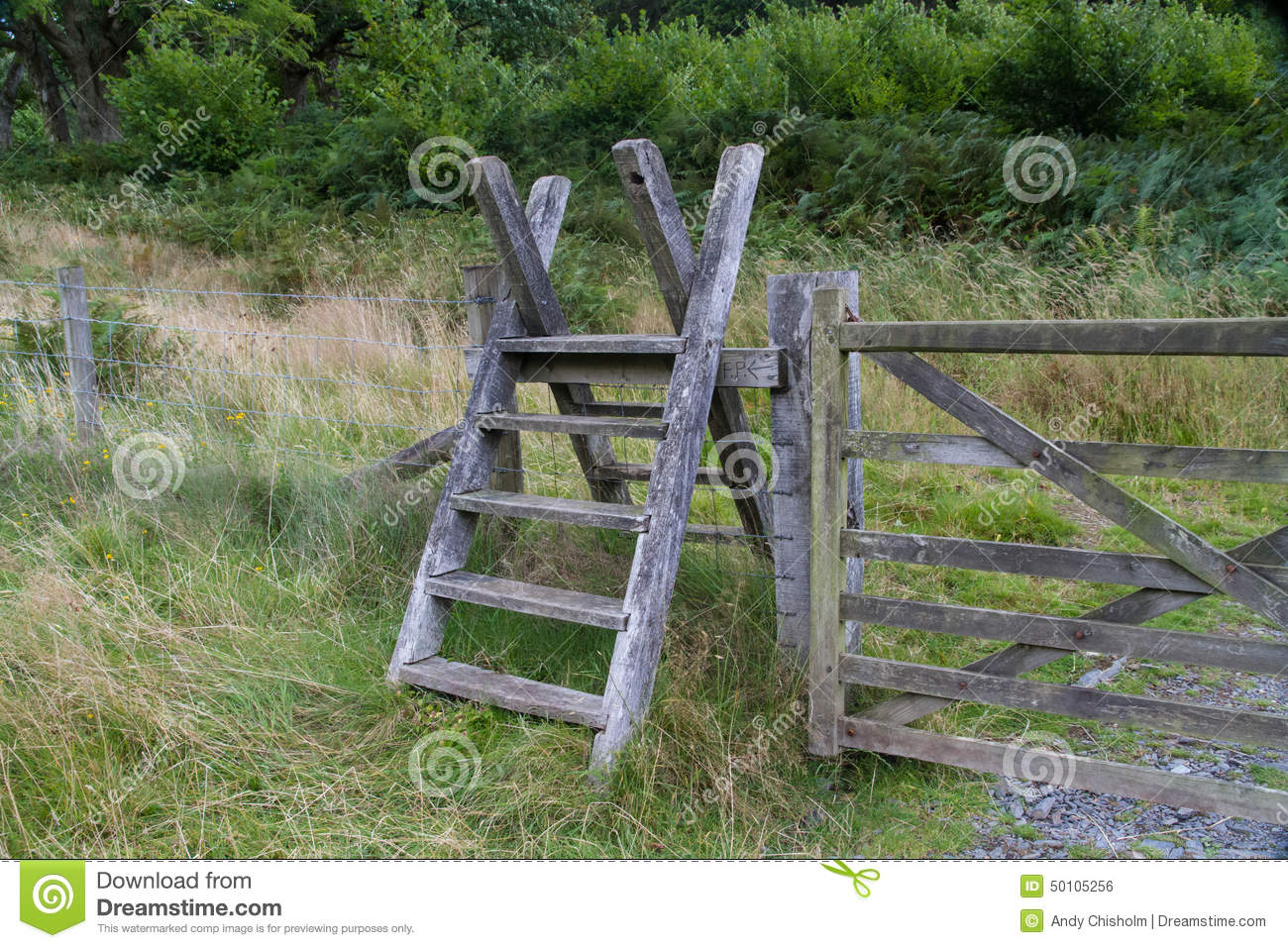 Latter Stile Style Steps Up And Over Fence Stock Photo