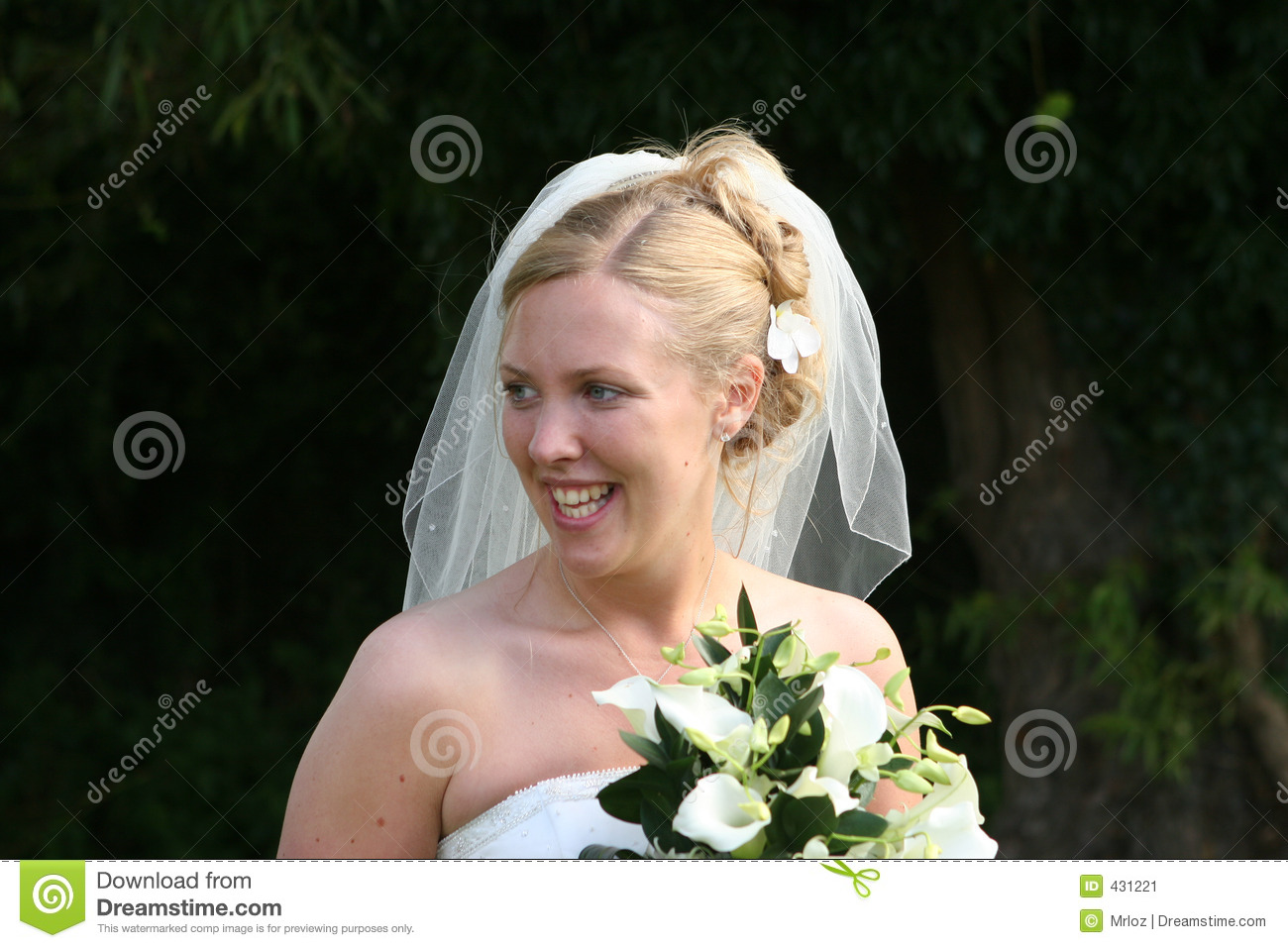 The Laughing Bride