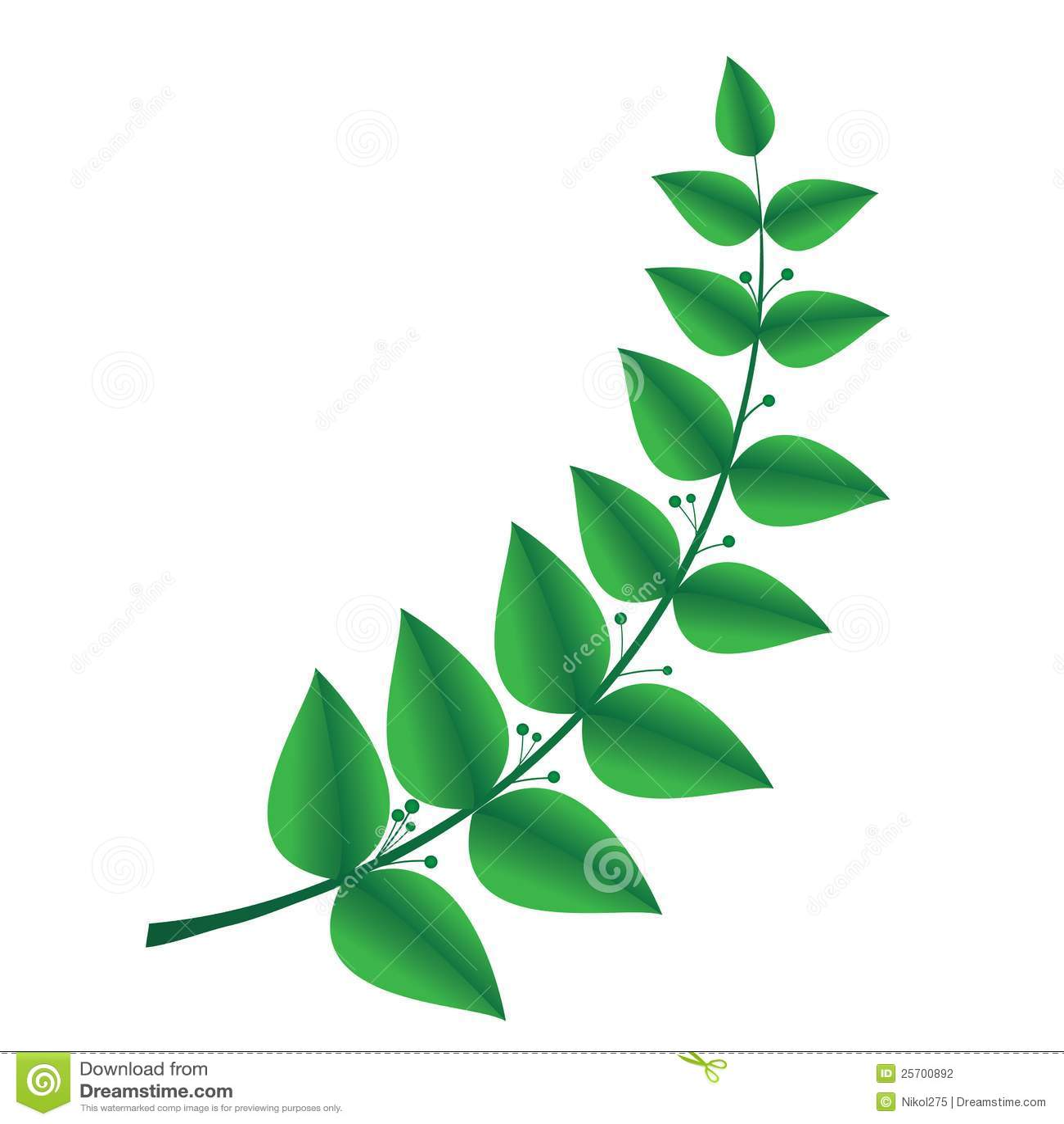 детская веточка растения которая символизирует мир невырубные, необходимо