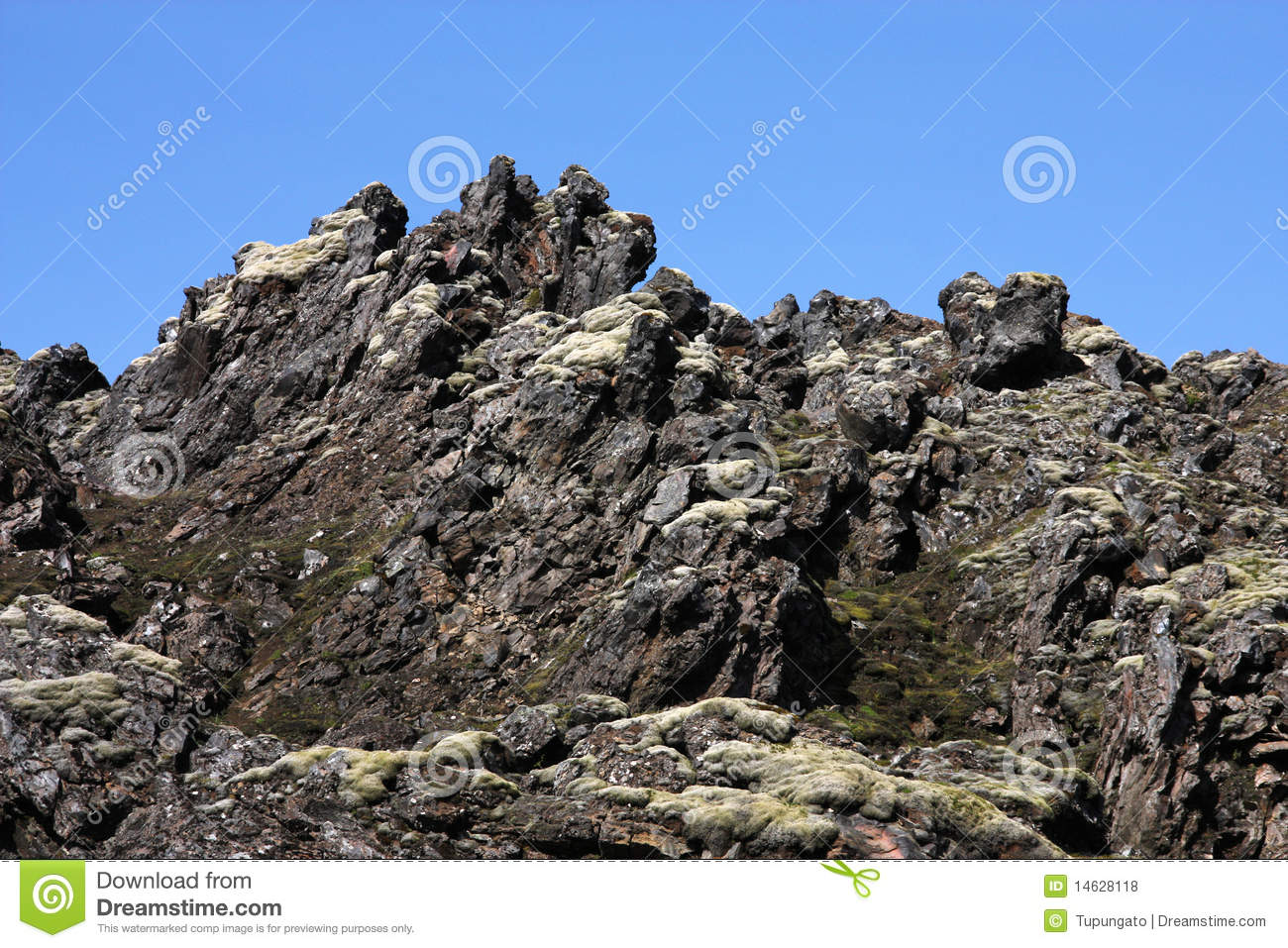 download Distributed Autonomous Robotic Systems 6 2007