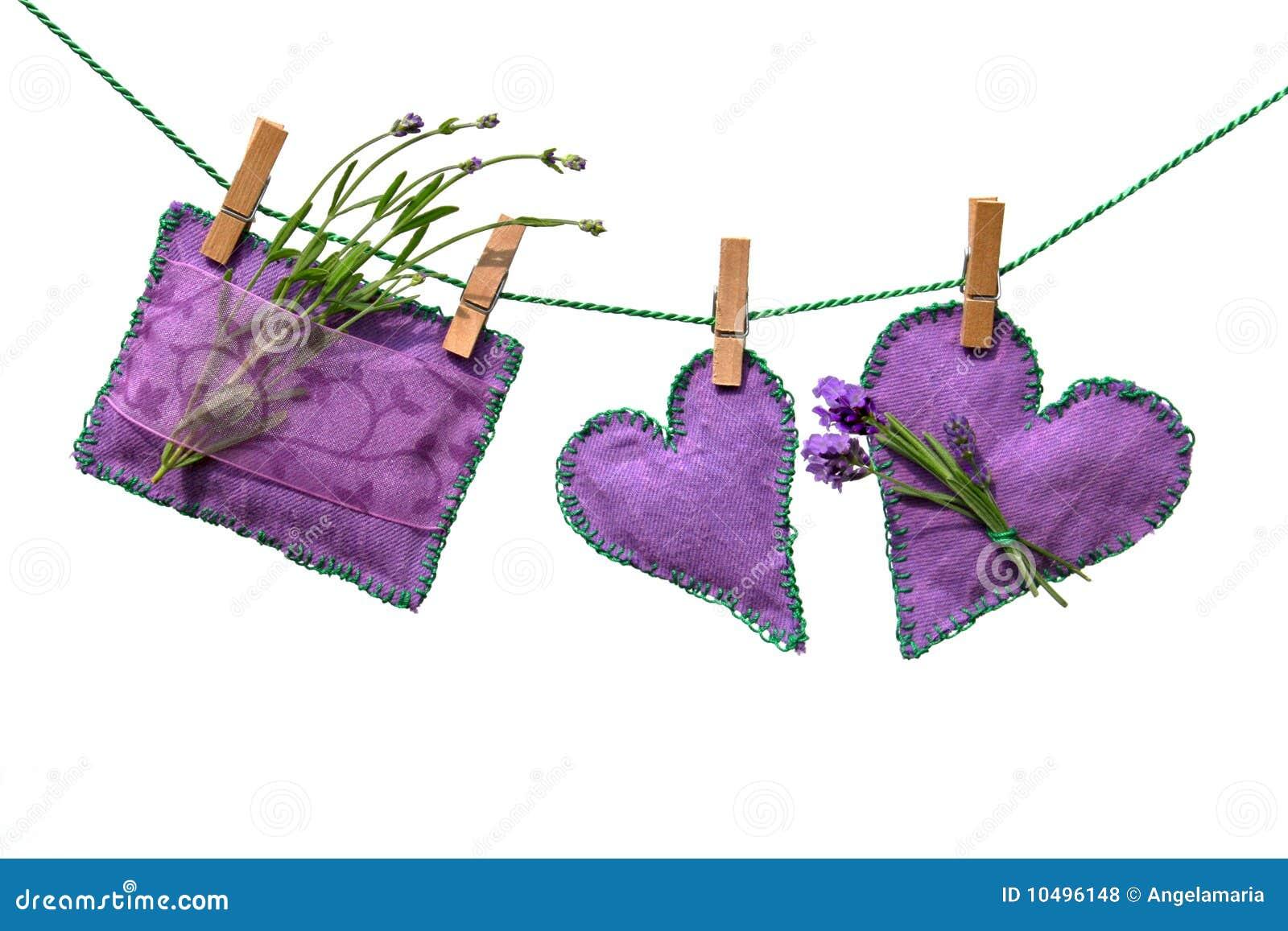 Lavande de fleurs de coussins