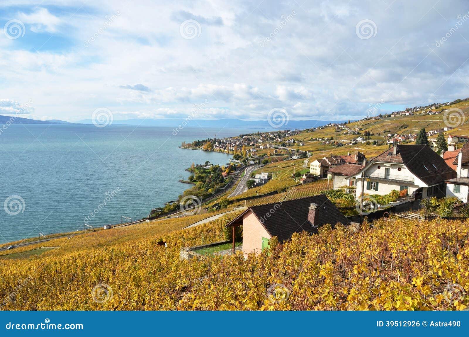 Lavaux region, Switzerland
