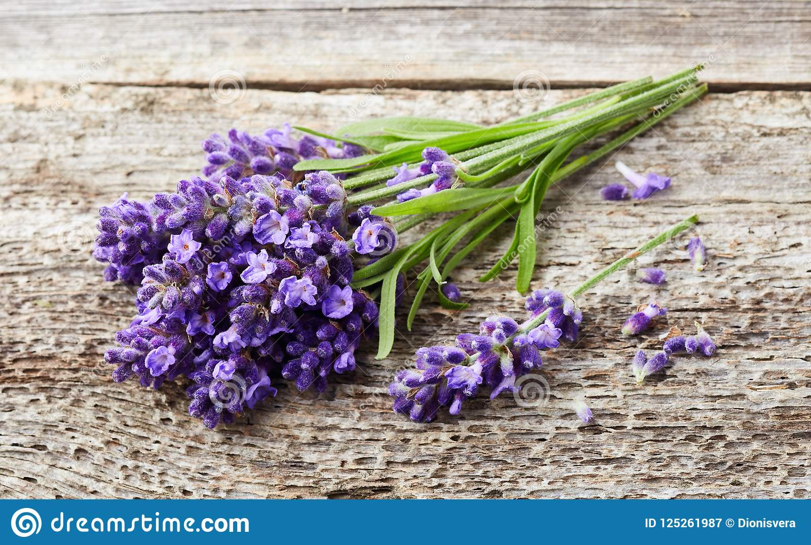 Lavendel blommar på träbakgrund