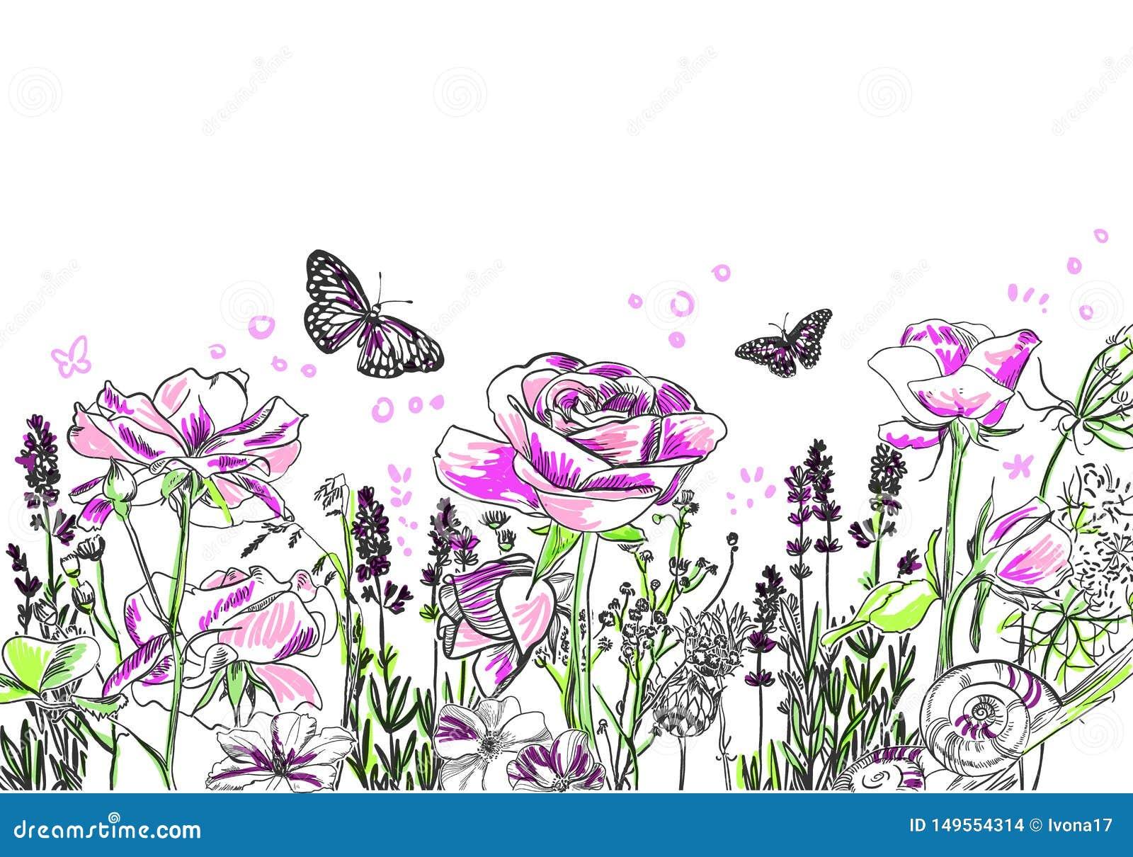 Lavendel stieg Blumenvektorkarten-Hintergrundpurpur