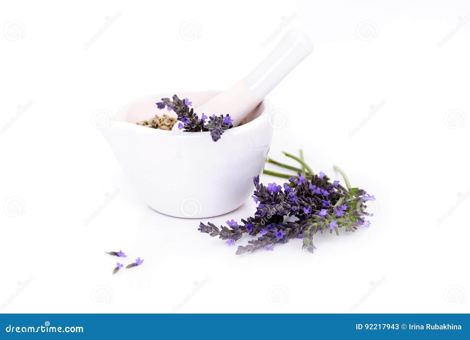 Lavendelblommor, lavanderextrakt och montar med torra blommor som isoleras på vit