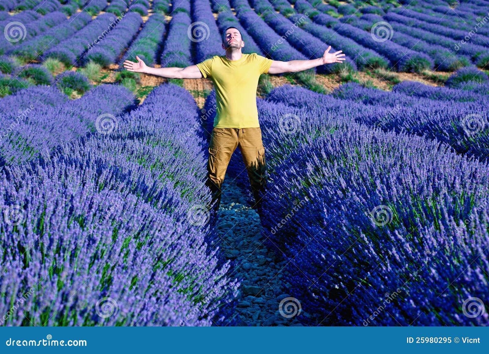 Lavendelfelder lizenzfreies stockfoto bild 25980295 for Lavendelfelder provence