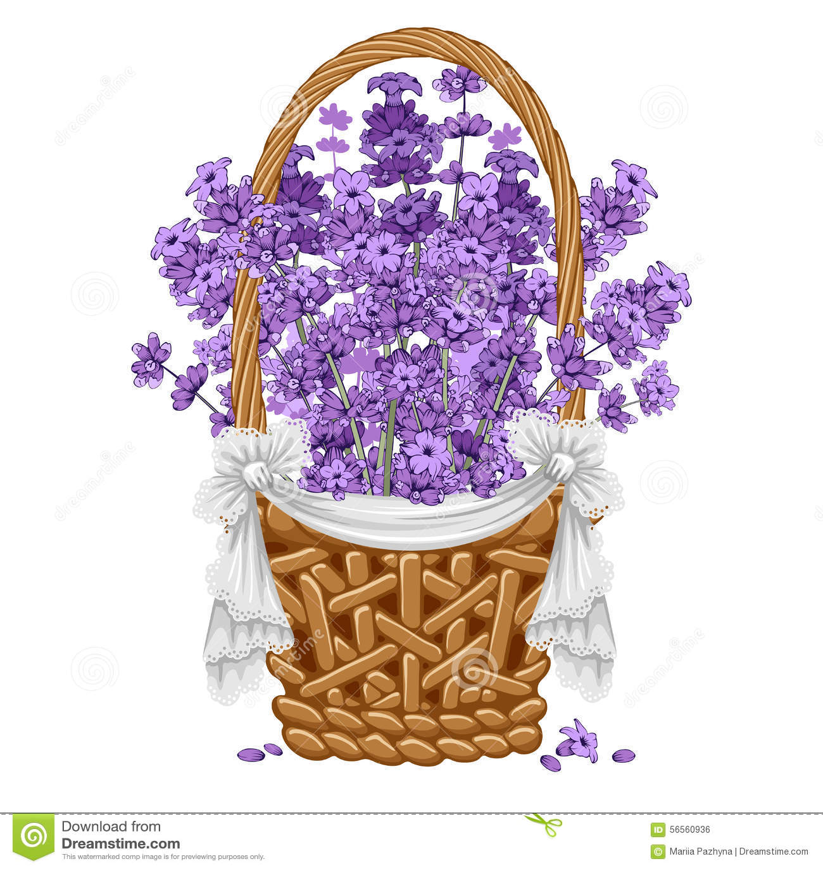 Download Lavender στο καλάθι διανυσματική απεικόνιση. εικονογραφία από φυτό - 56560936
