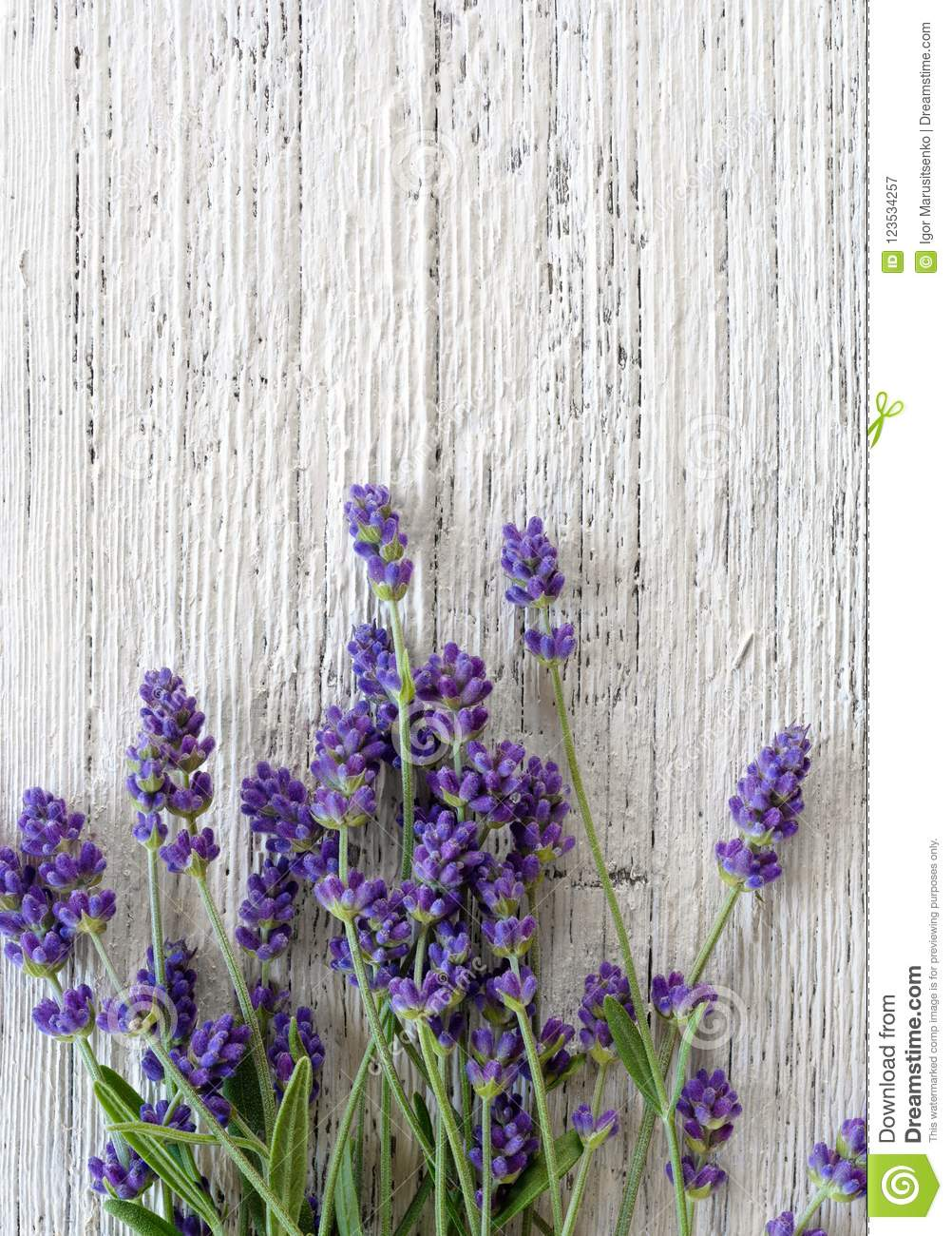 Lavender Background Vertical Top View Stock Image Image Of Healthy Blank 123534257 New users enjoy 60% off. https www dreamstime com lavender background vertical top view flowers white wooden textured image123534257