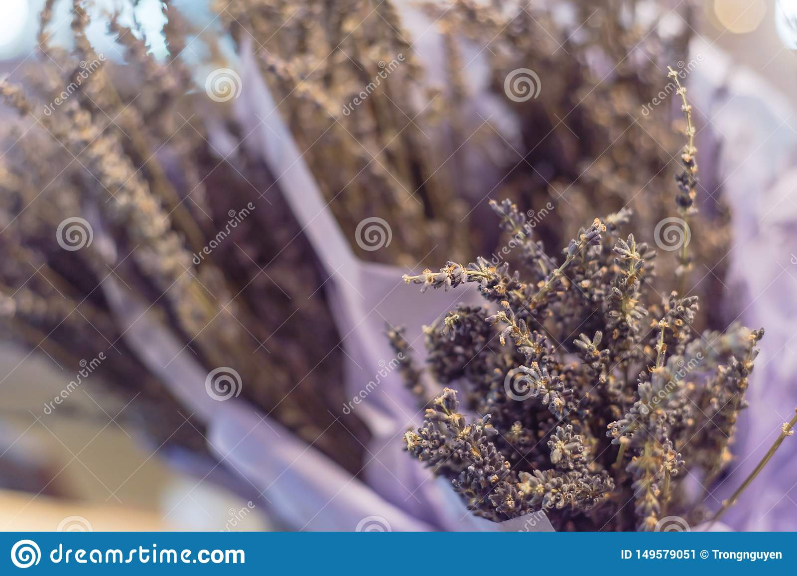 Lavender Bouquet In Paper Wrap At Local Shop In Texas, USA