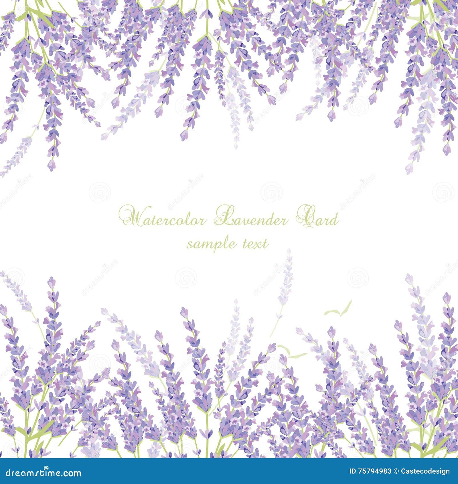 Victorian Mansion Floor Plans Lavender Borders 28 Images Lavender Plant Clip Art