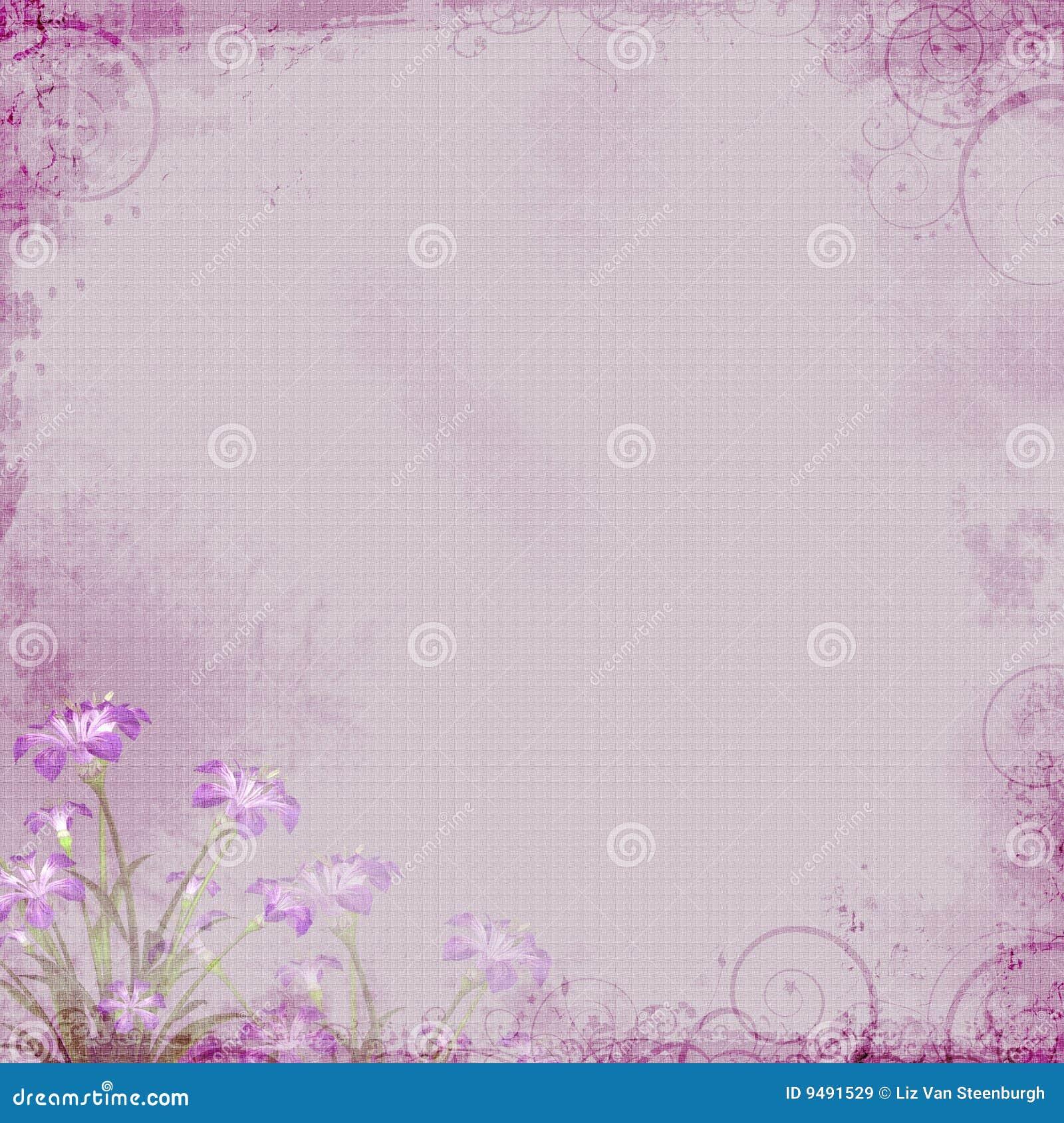 lavender floral background stock illustration  image of purple