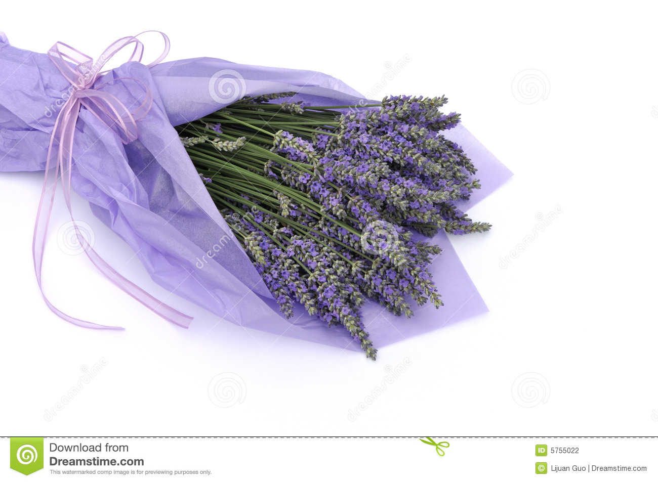 Lavender flower bouquet stock photo. Image of paper, wrap - 5755022