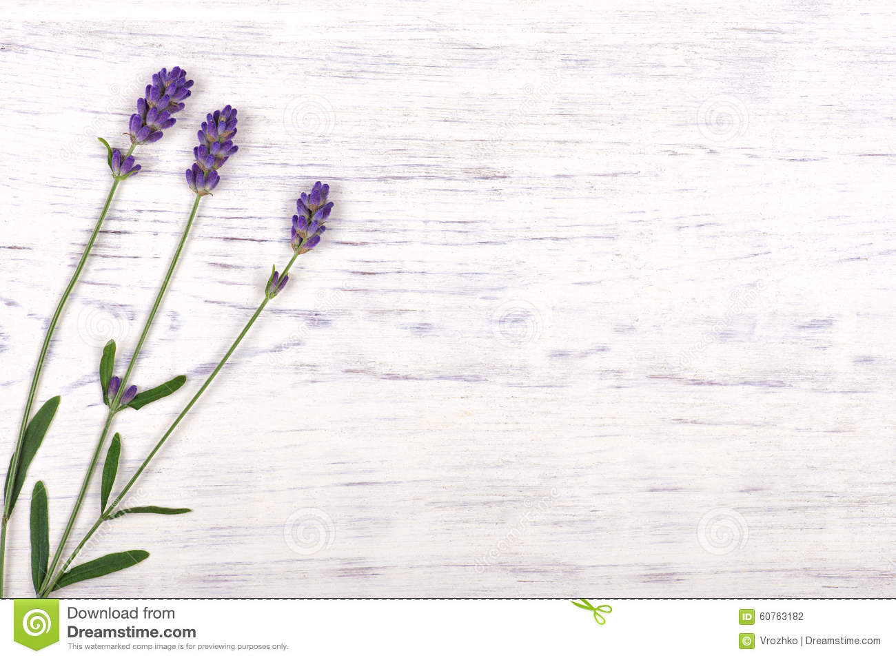 Lavender flowers on white wood table background stock photo image lavender flowers on white wood table background mightylinksfo