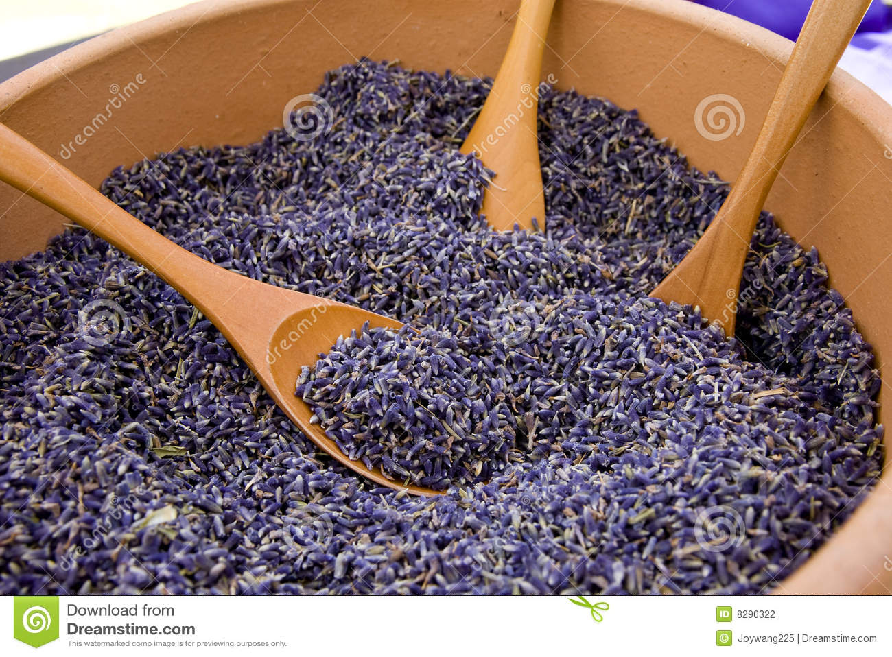 Lavender Seeds Stock Photography - Image: 8290322