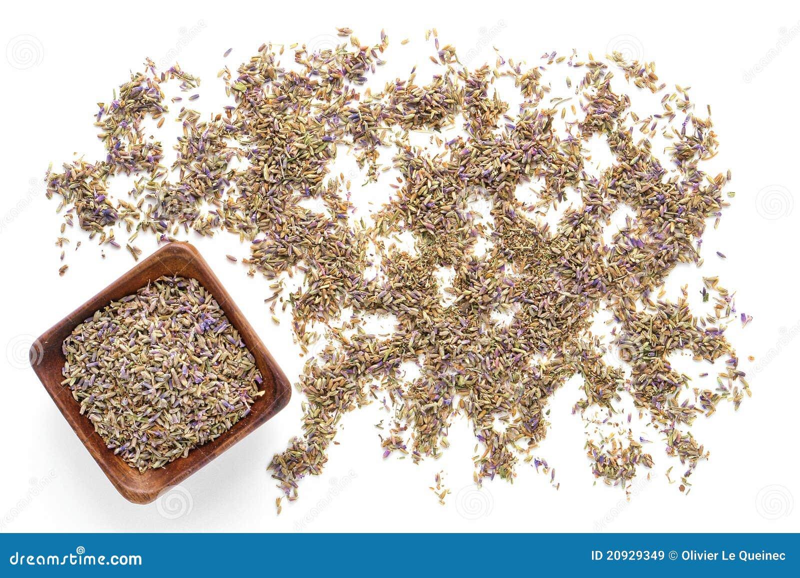 как выглядят семена лаванды